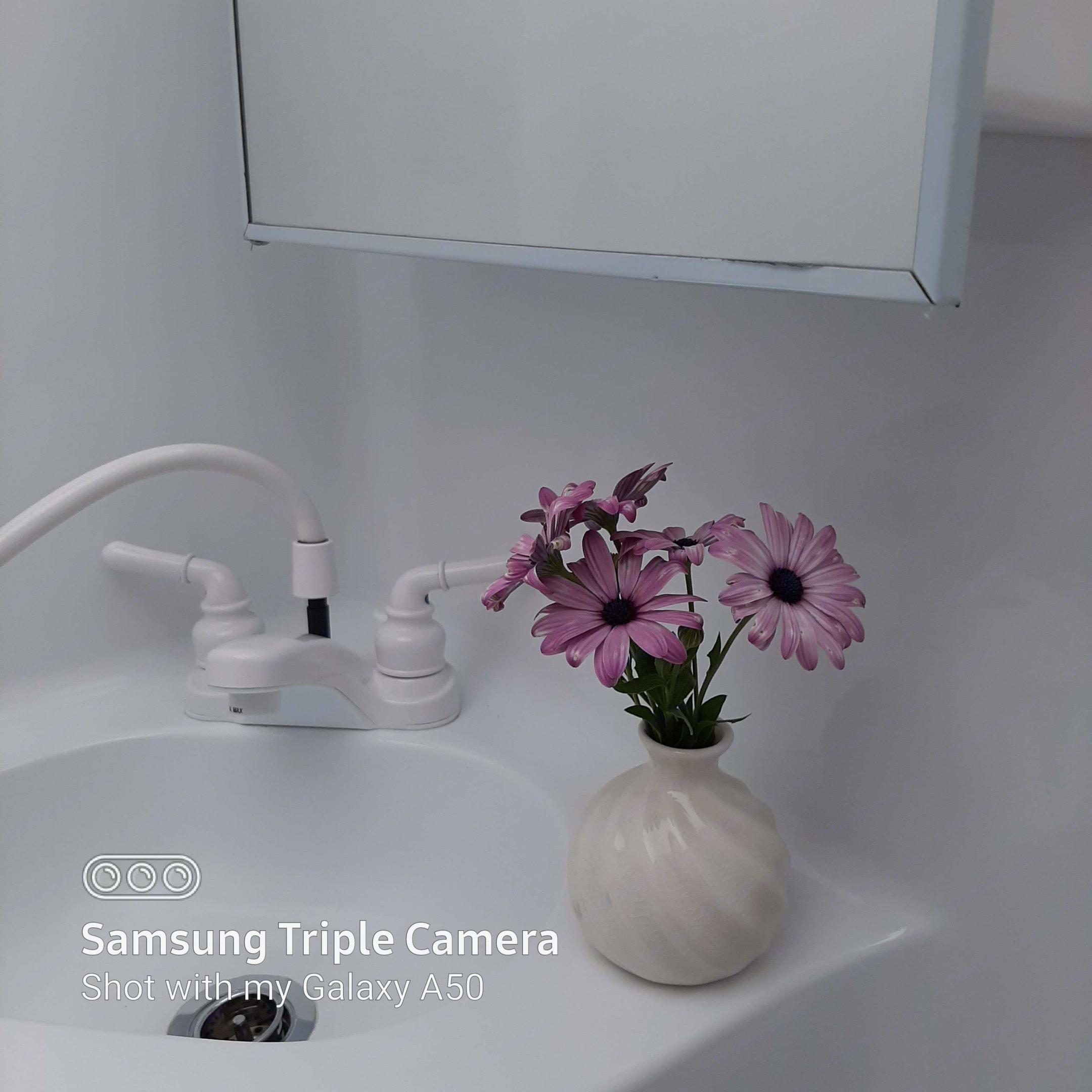 Bathroom Sink. Adventurer Class C 2018