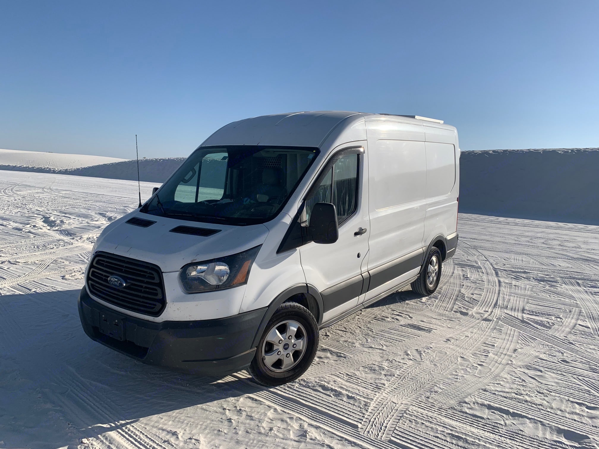 Bud showing off her color in White Sands National Park, NM. Ford Transit 2017