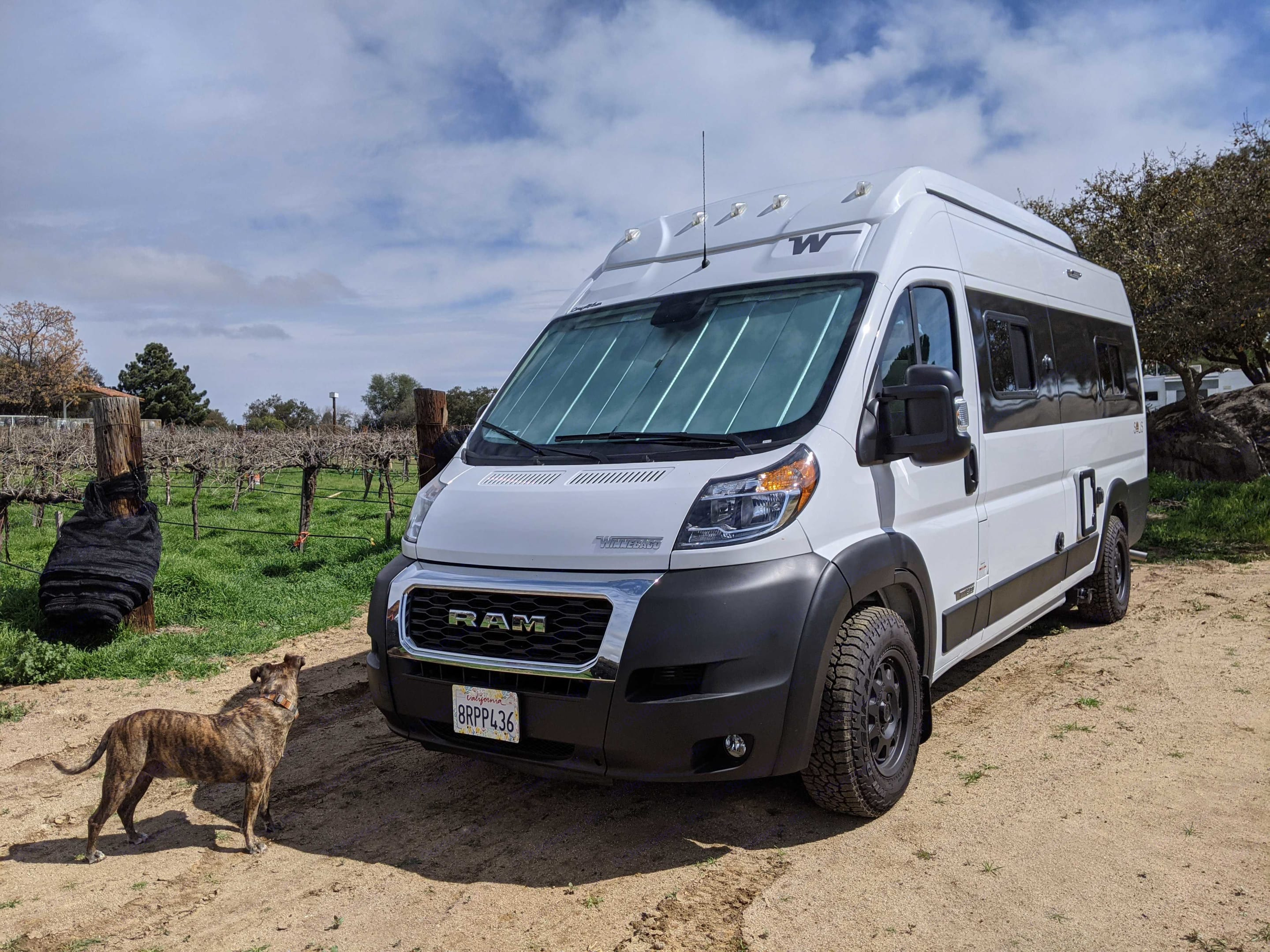 Camping for the night at a winery in Ramona. Sun shades keep the light out, and the van cool . Winnebago Solis 59PX 2021