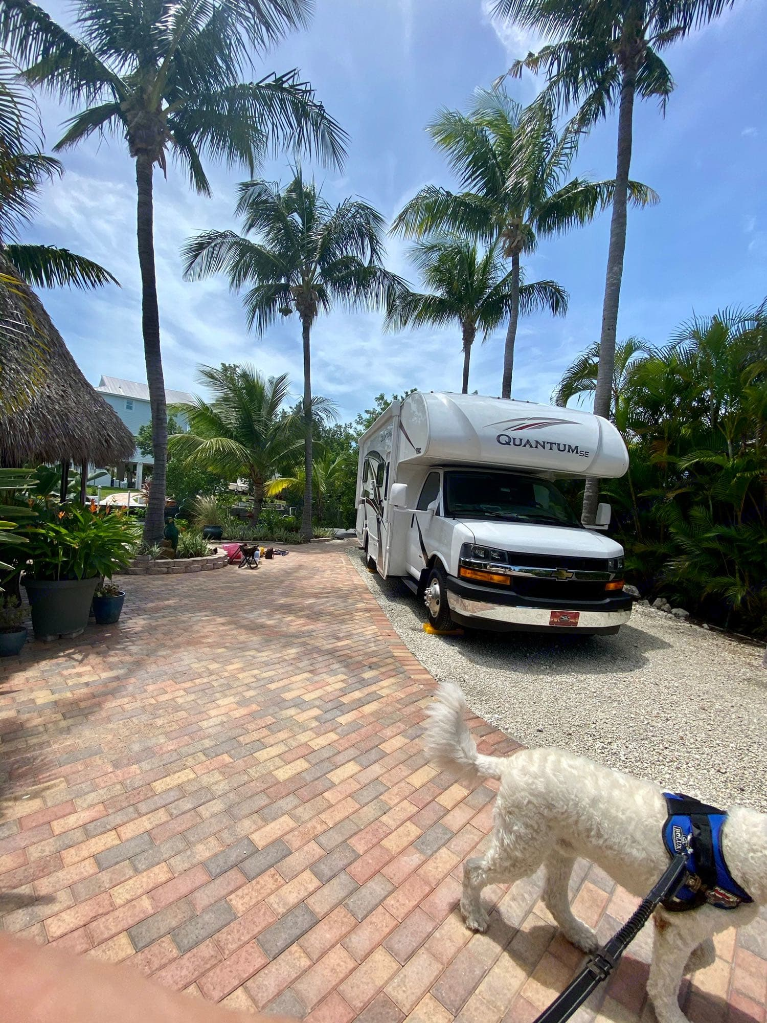 blue water key mile marker 11. Thor Motor Coach Other 2020