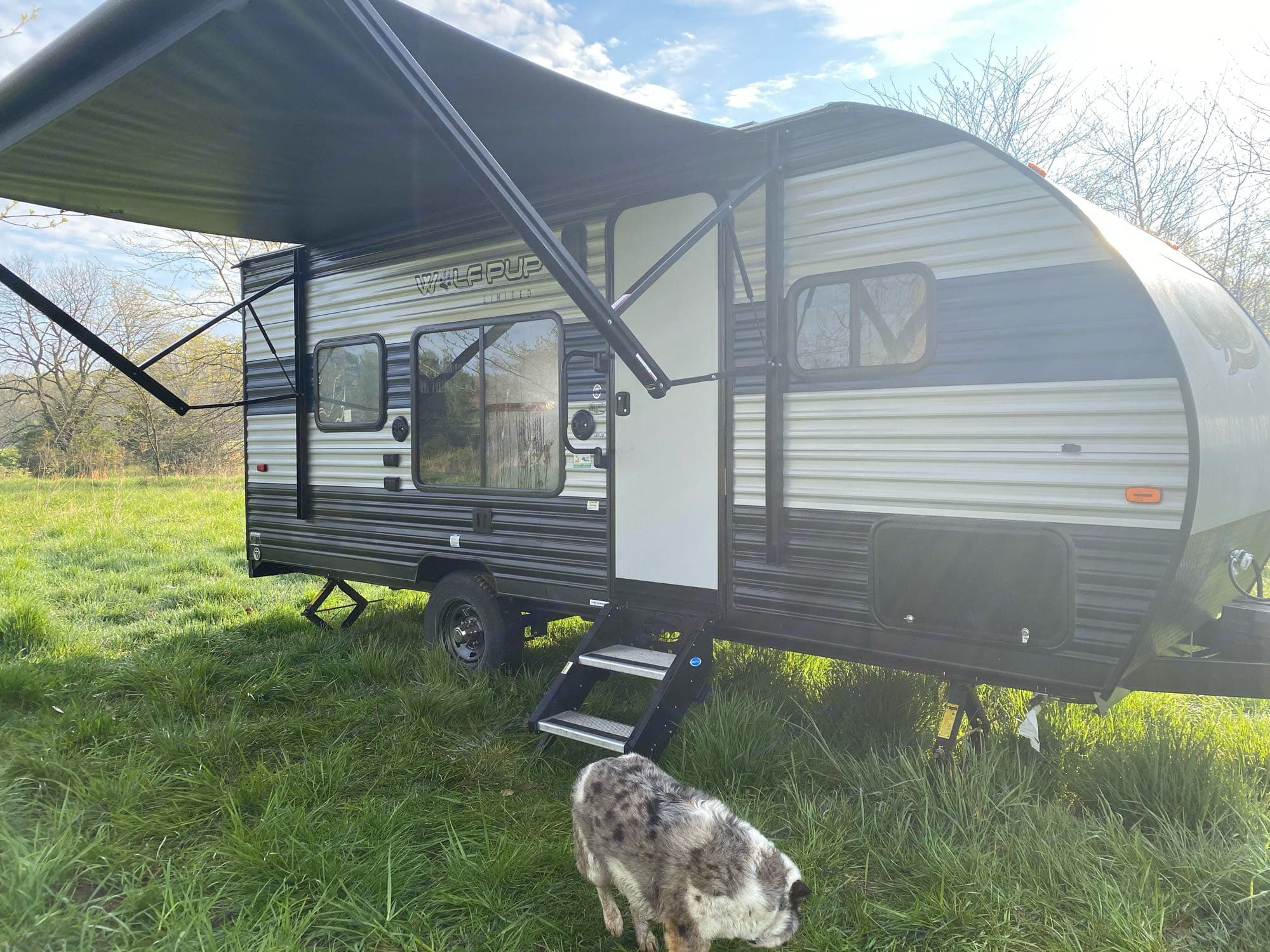 awning and exterior. Forest River Wolf Pup 2021