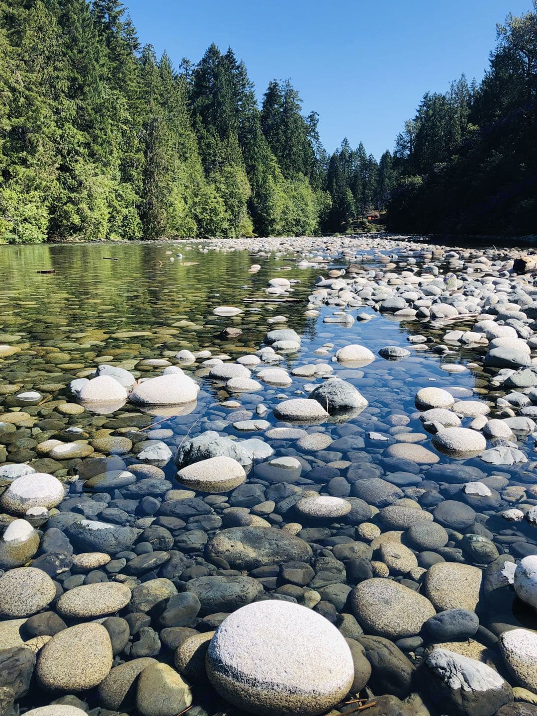 Crystal clear Nanaimo River is the best place to spend your summer days.. Coachmen Catalina 2017