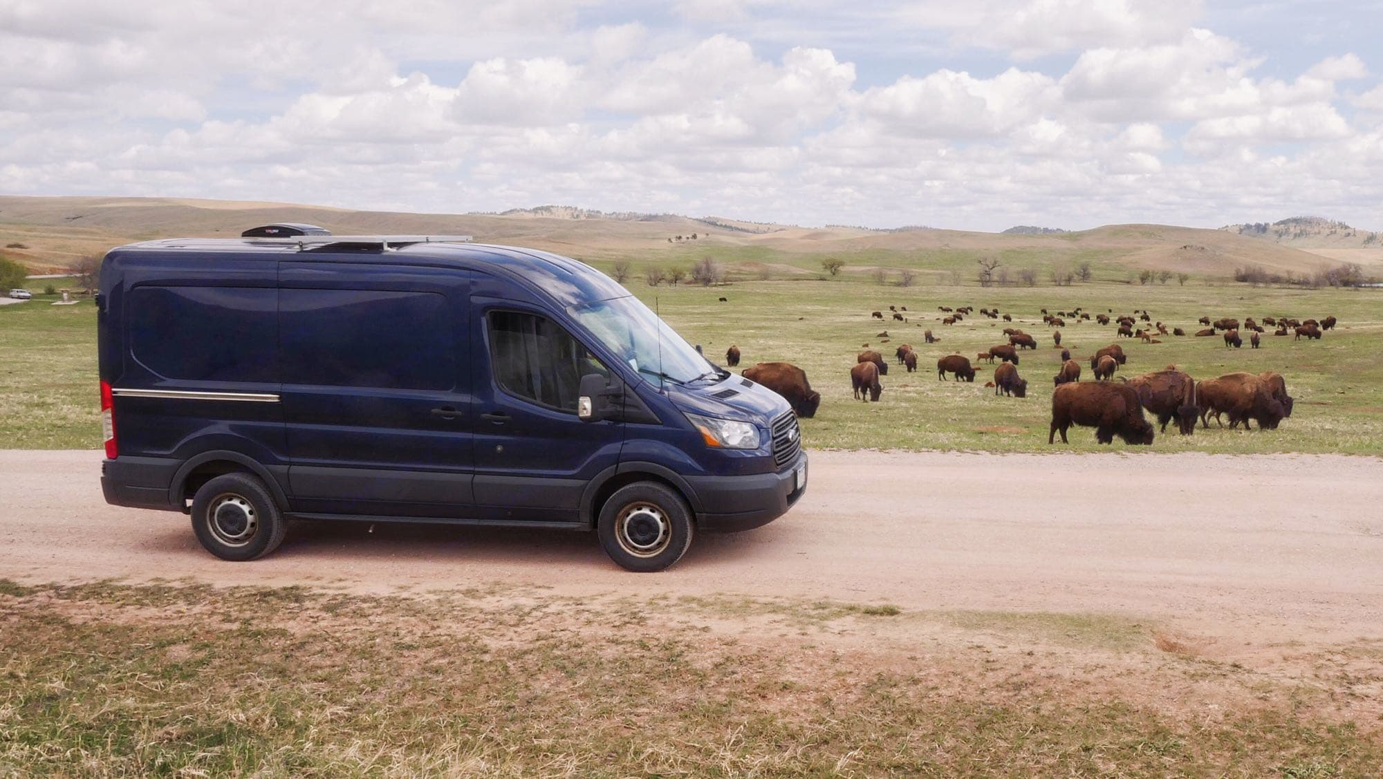 """""""Oh give me a home where the buffalo roam..."""". Ford Transit 2015"""