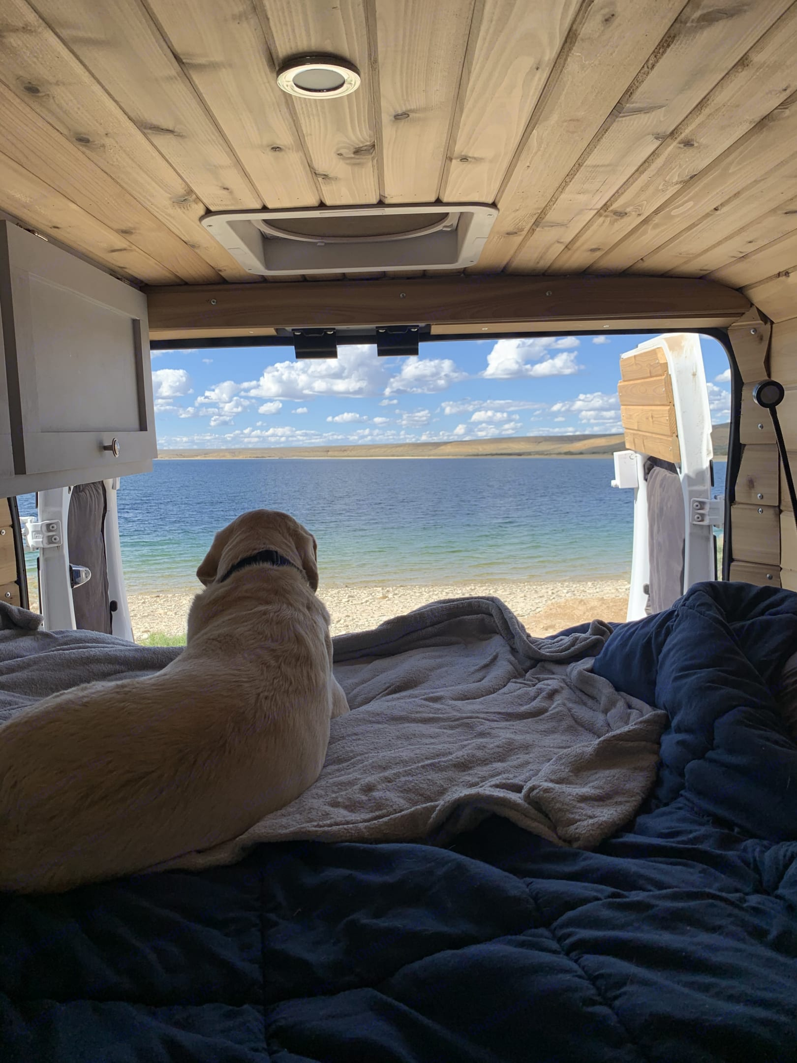 Who wouldn't want to share an adventure with their dog!. Dodge 3500 2020