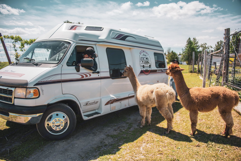 Dodge Ram Van Roadtrek 1996