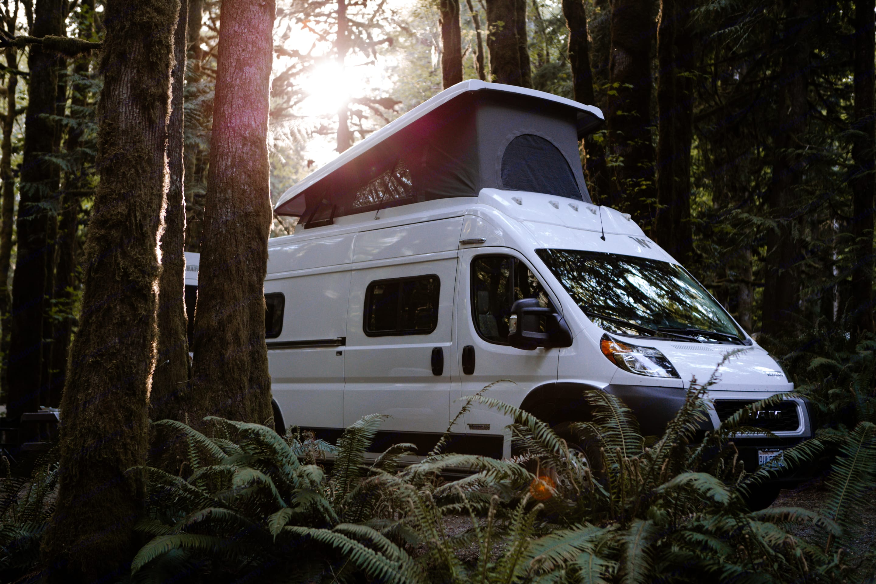 Nestle in for the night and pop the top for your own tree top escape.. Winnebago Solis 2021