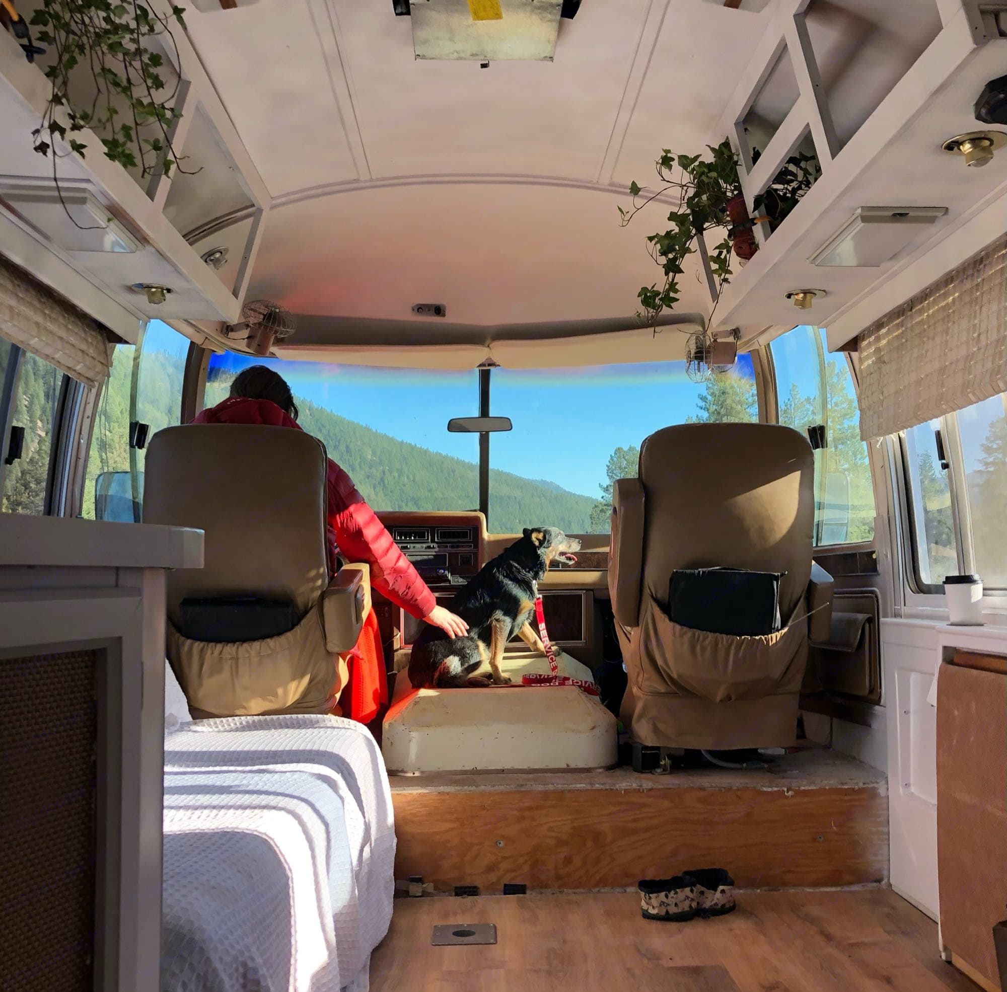Airstream Airstream 1984