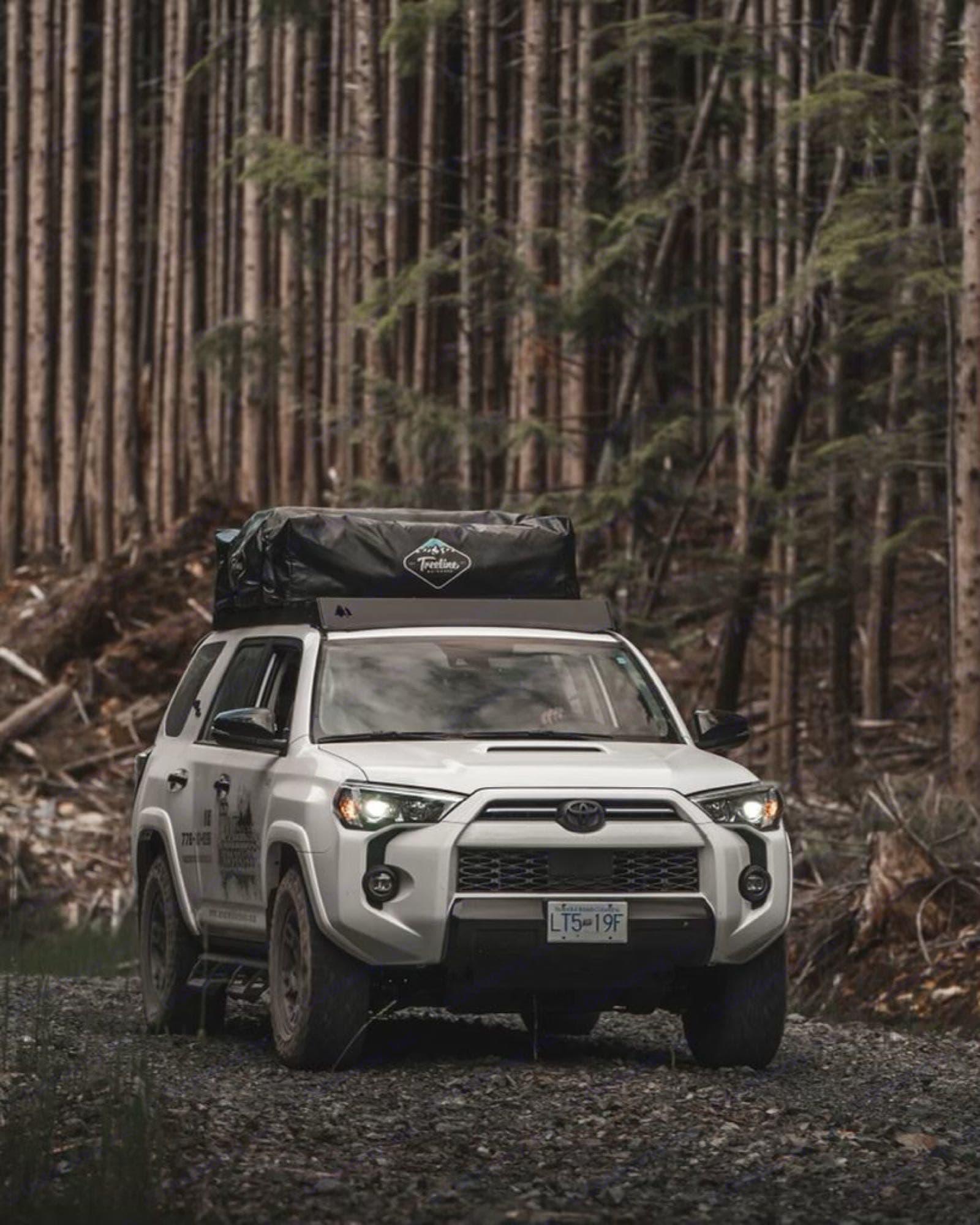 Lucy in her natural habitat. Toyota 4Runner 2021