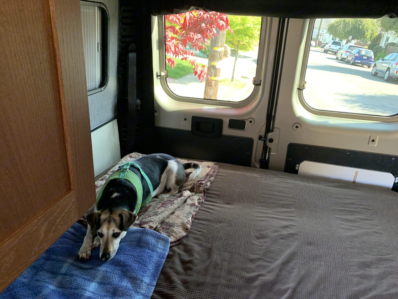 Freshly made bed before departure.. Roadtrek Promaster 2021