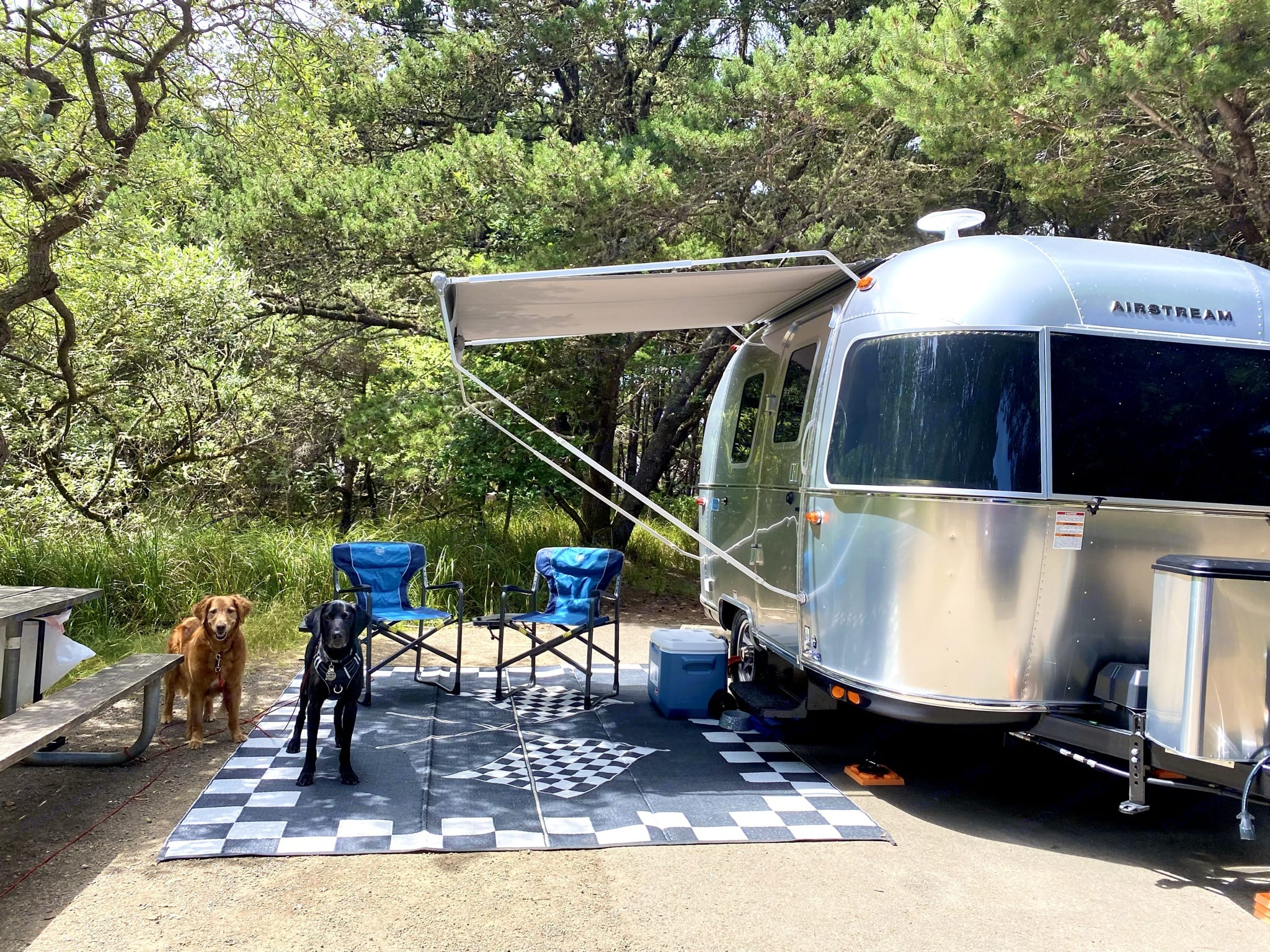 Beautiful Cape Disappointment RV site . Airstream Sport 2021