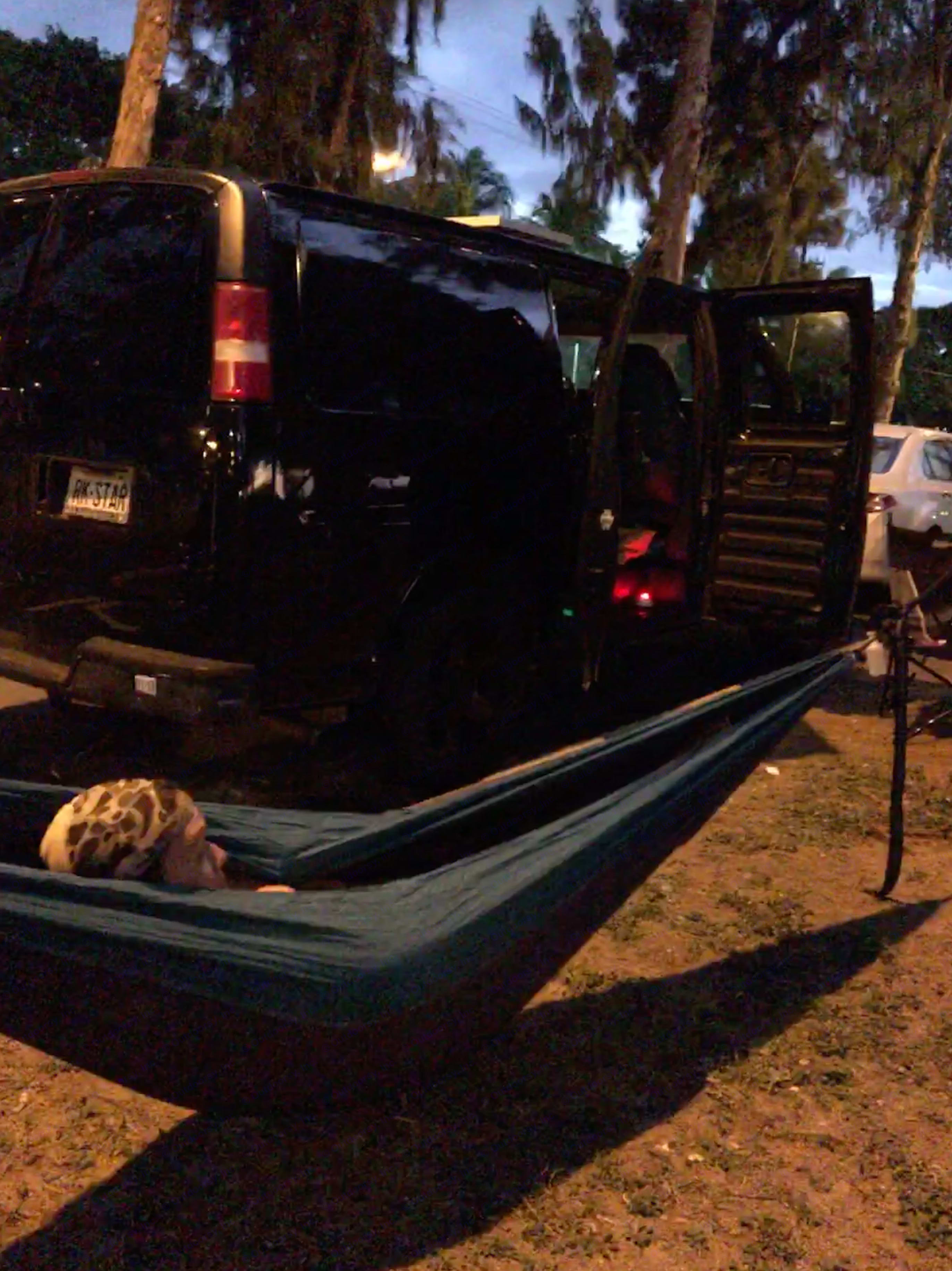 lounging in hammock, two of which are provided in the van.. Chevrolet Other 2004