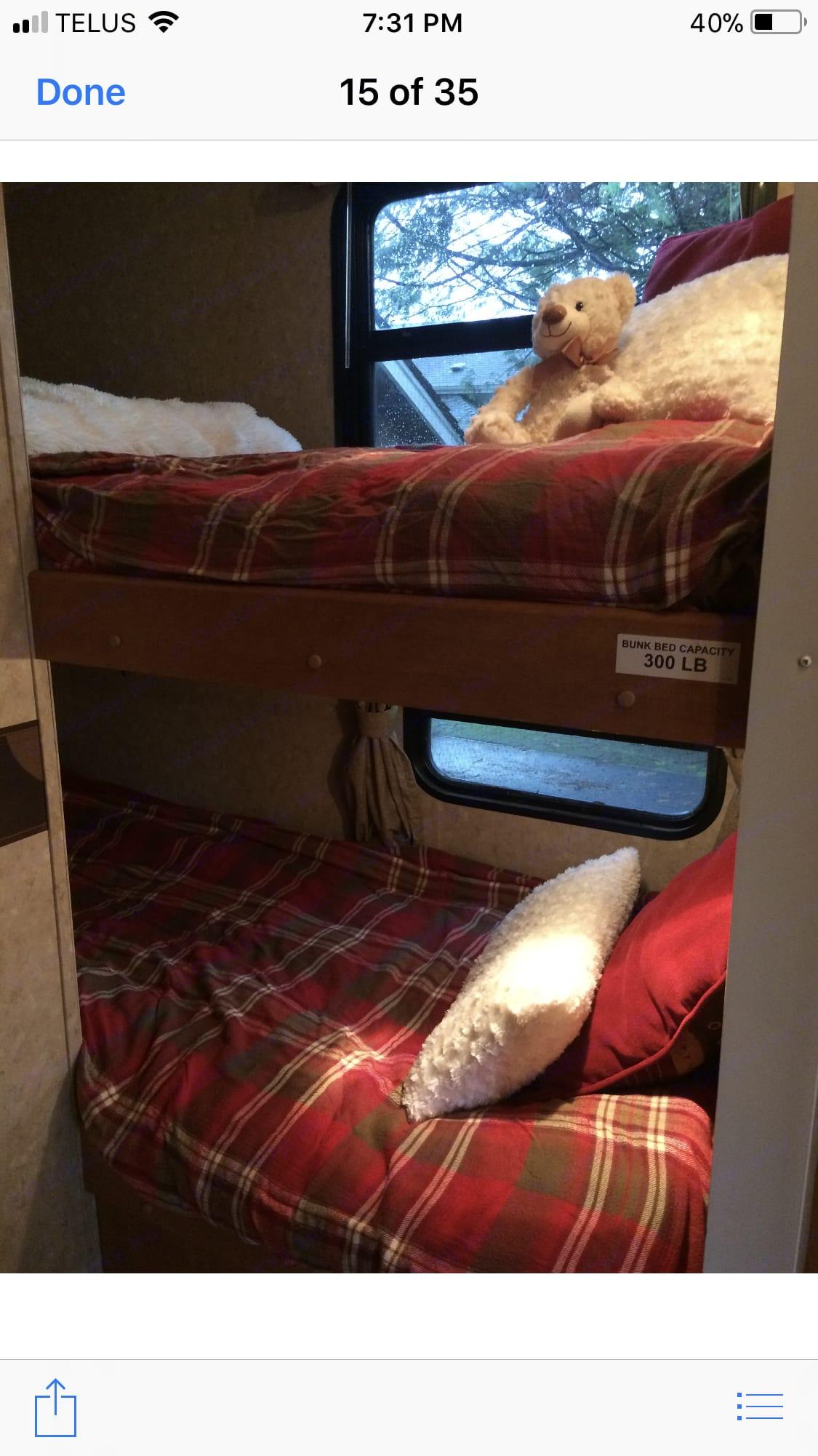 Bunk beds. Palomino Puma 2013