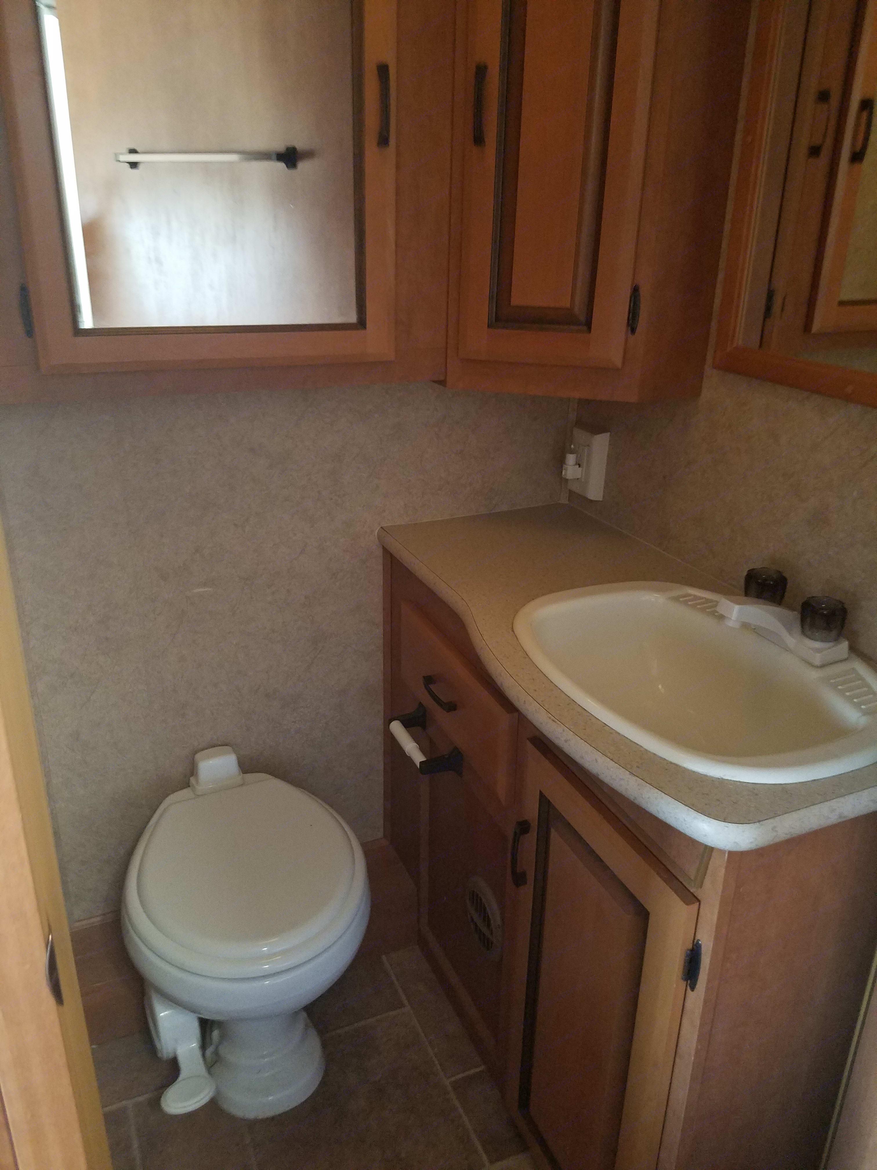 bathroom . Forest River Sunseeker 2010