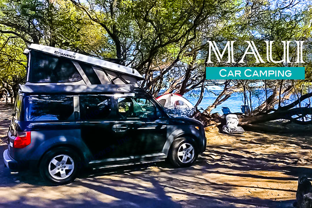 Car camping on the beach of Maui is easy with Lulu1 and its' pop up rooftop tent!. Honda Element eCamper by Ursa Minor Lulu #1 Black 2005