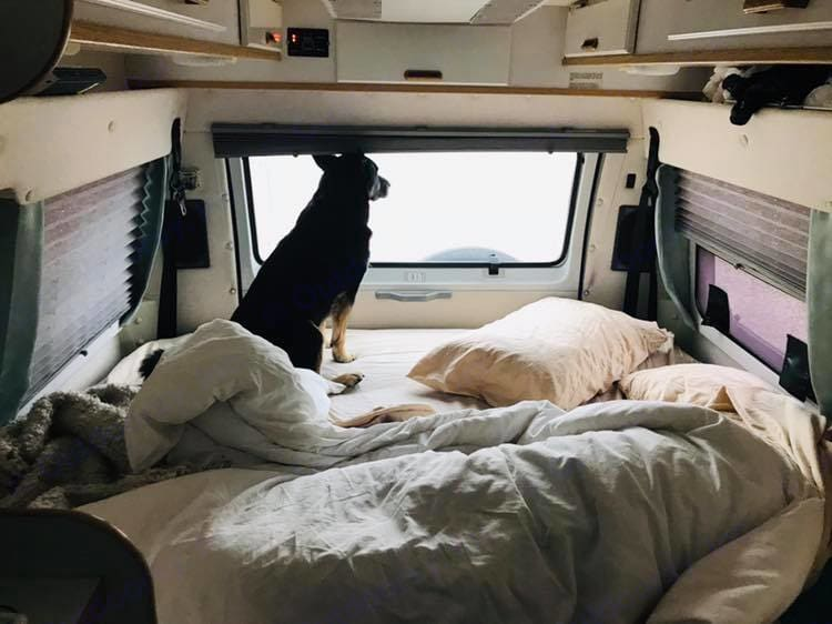 View of the back of the van while converted into a bed.. Leisure Travel Freedom 2000