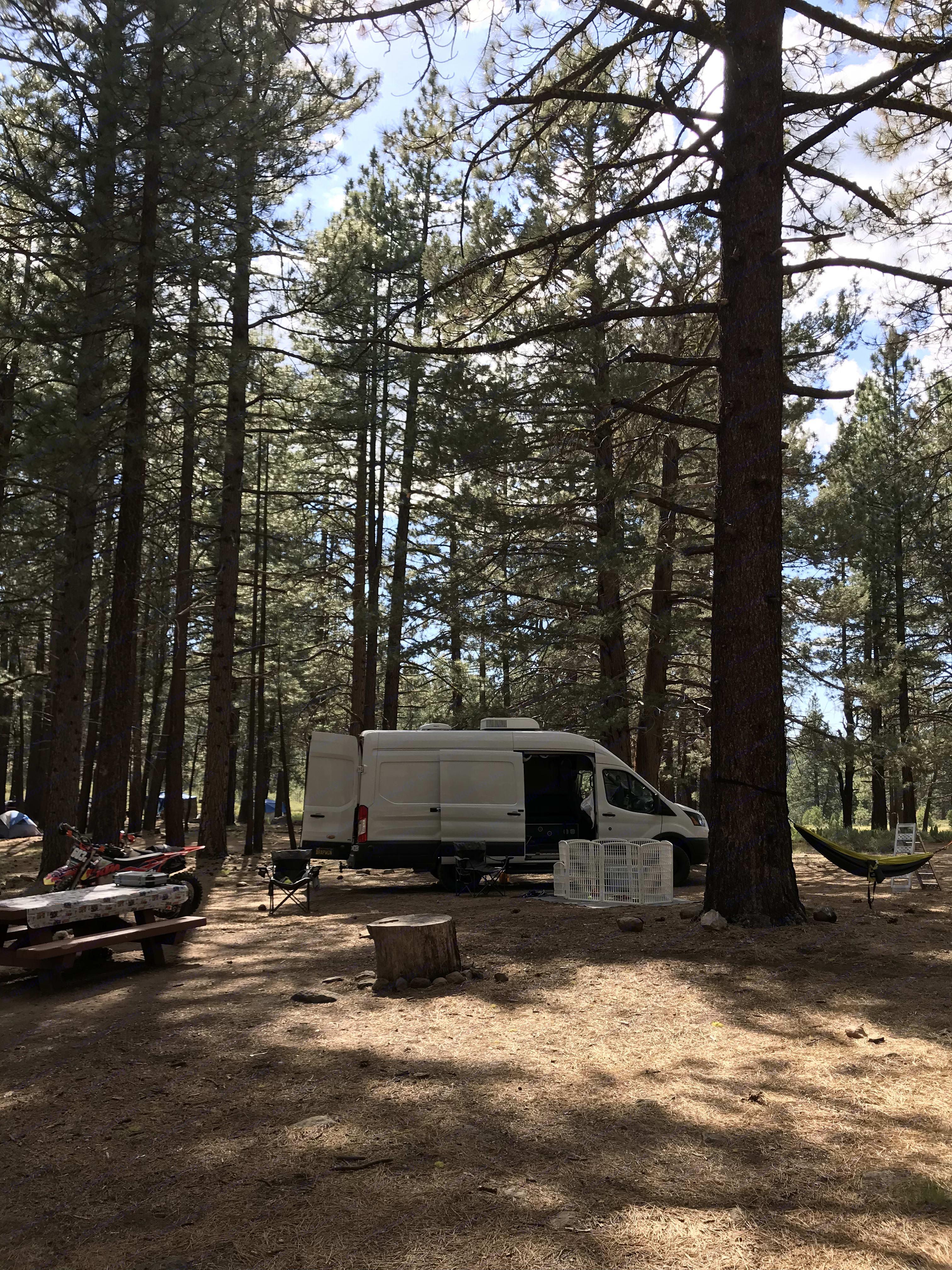 Hiding among the trees at Lake Tahoe, CA. Ford Transit Custom 2017