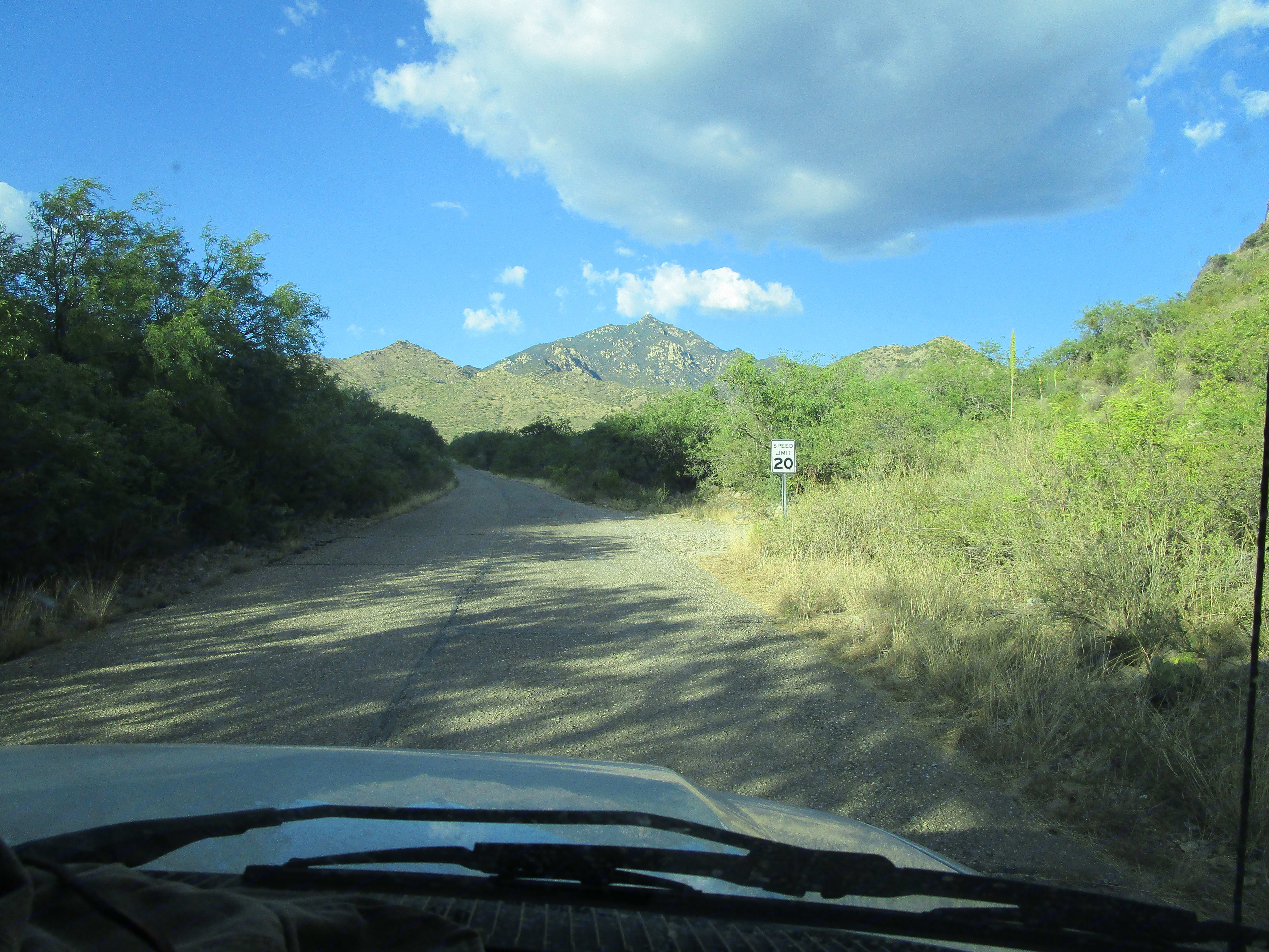 One of Southern Arizona's delightful drives!. Thor Motor Coach Four Winds 2013
