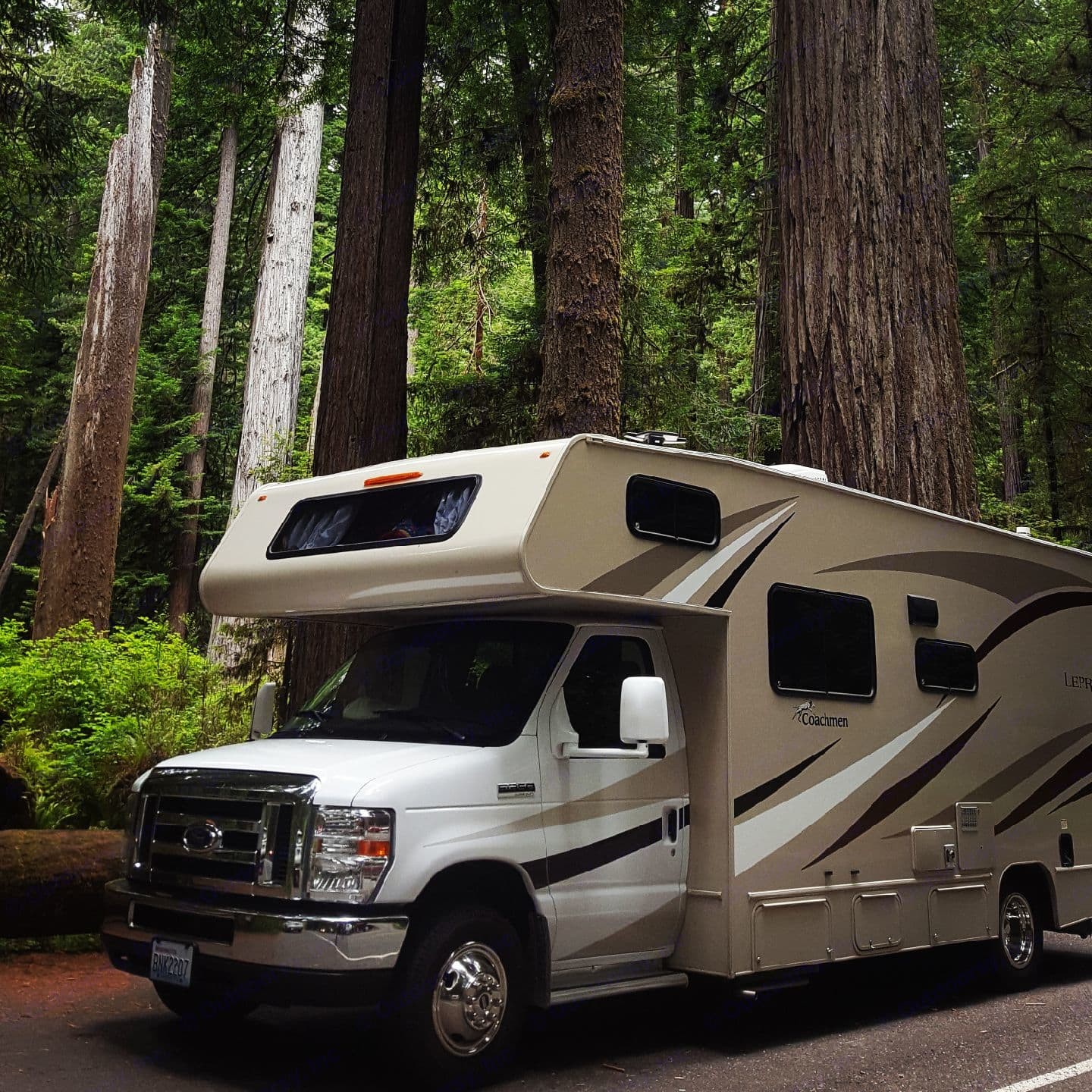 The entrance to the  Redwood Forest where even a smaller motorhome can go. Customer provided photo. Coachmen Leprechaun 2017