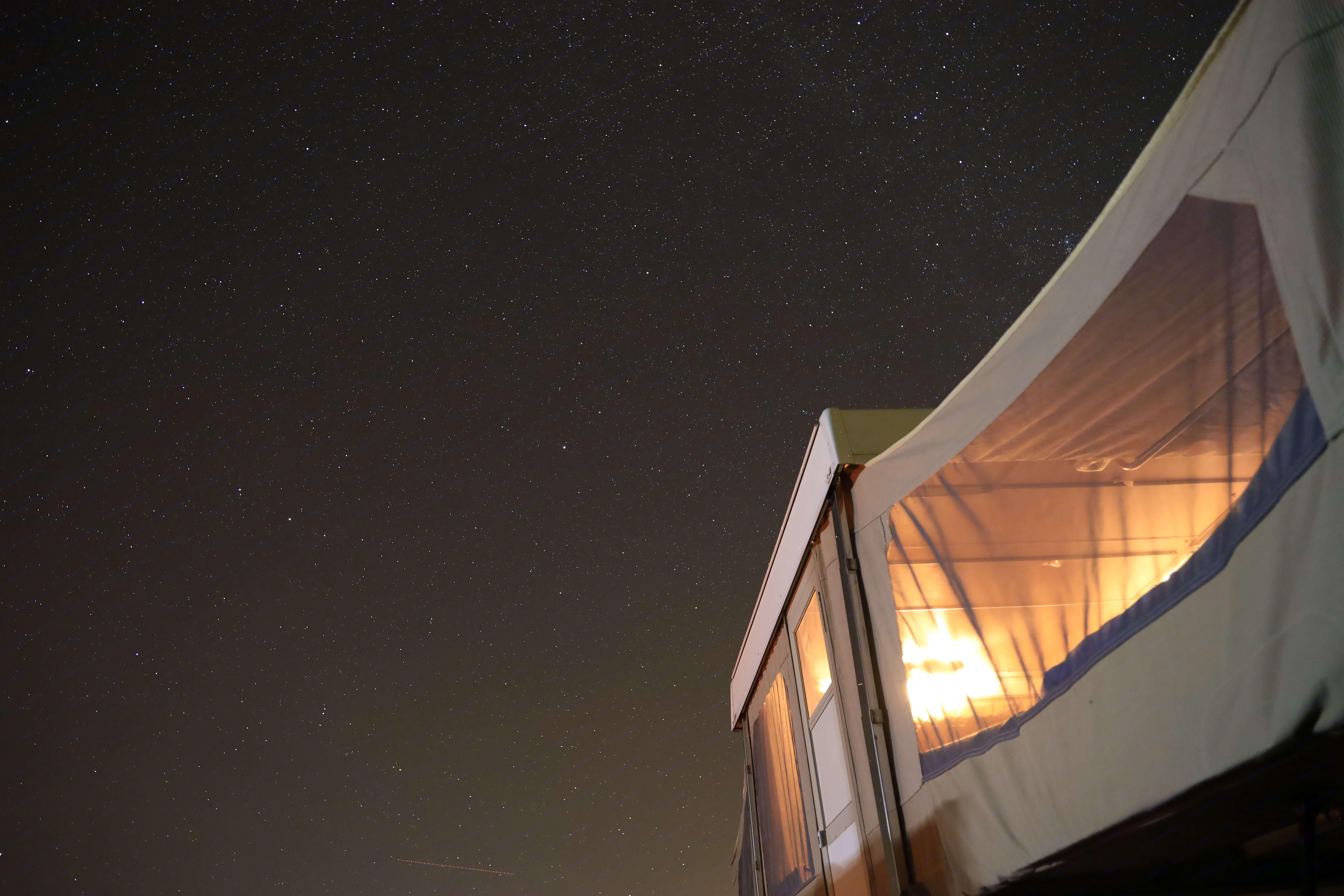 A beautiful star filled night in Joshua Tree, CA . Coleman Royal 1985