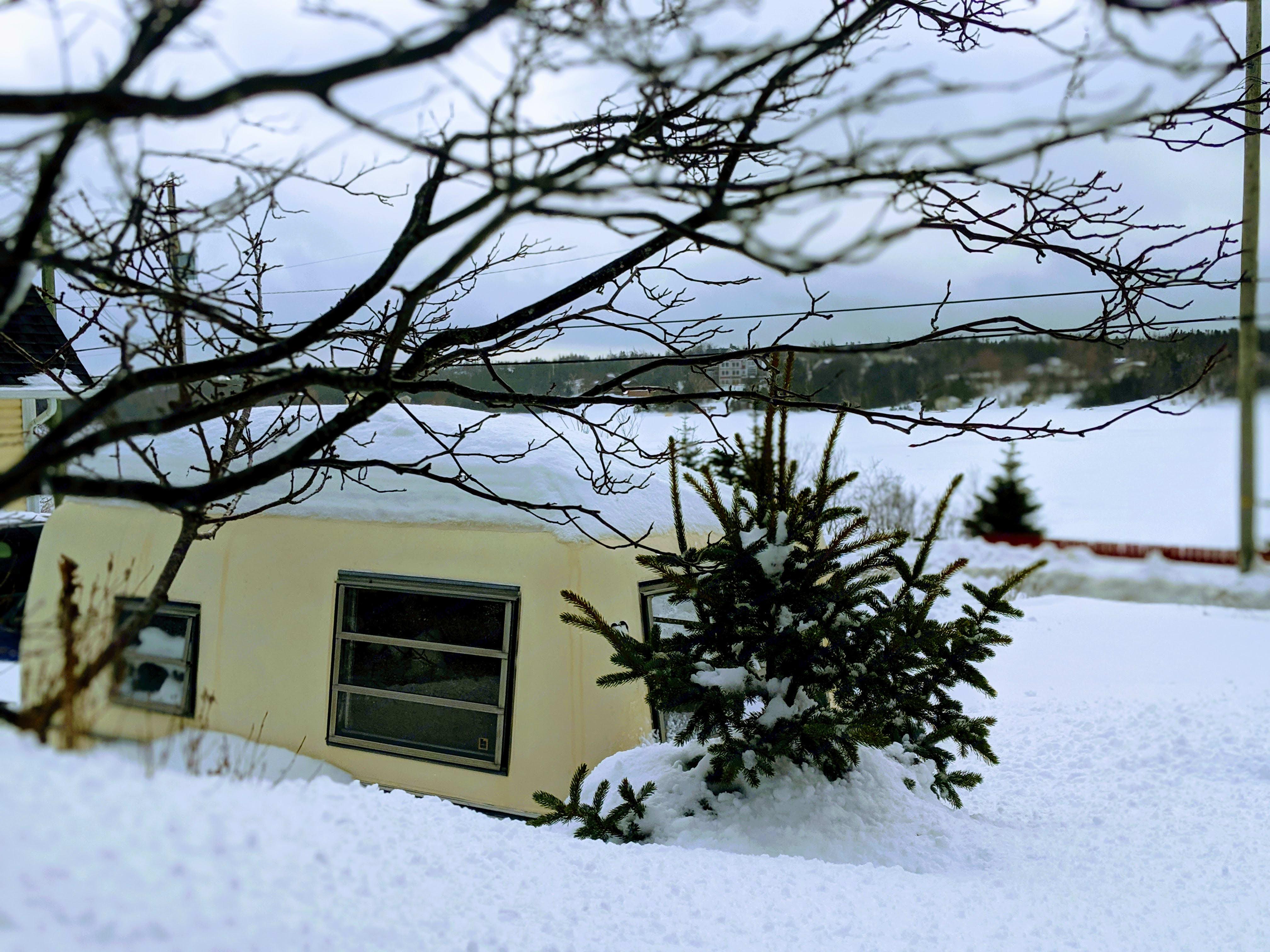 Snow!. Trillium Rv 1300 1981
