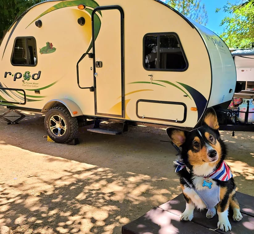 Another happy renter that went to Lake Isabella / Kern River KOA with their family and little pup.. Forest River R-Pod 178 2014