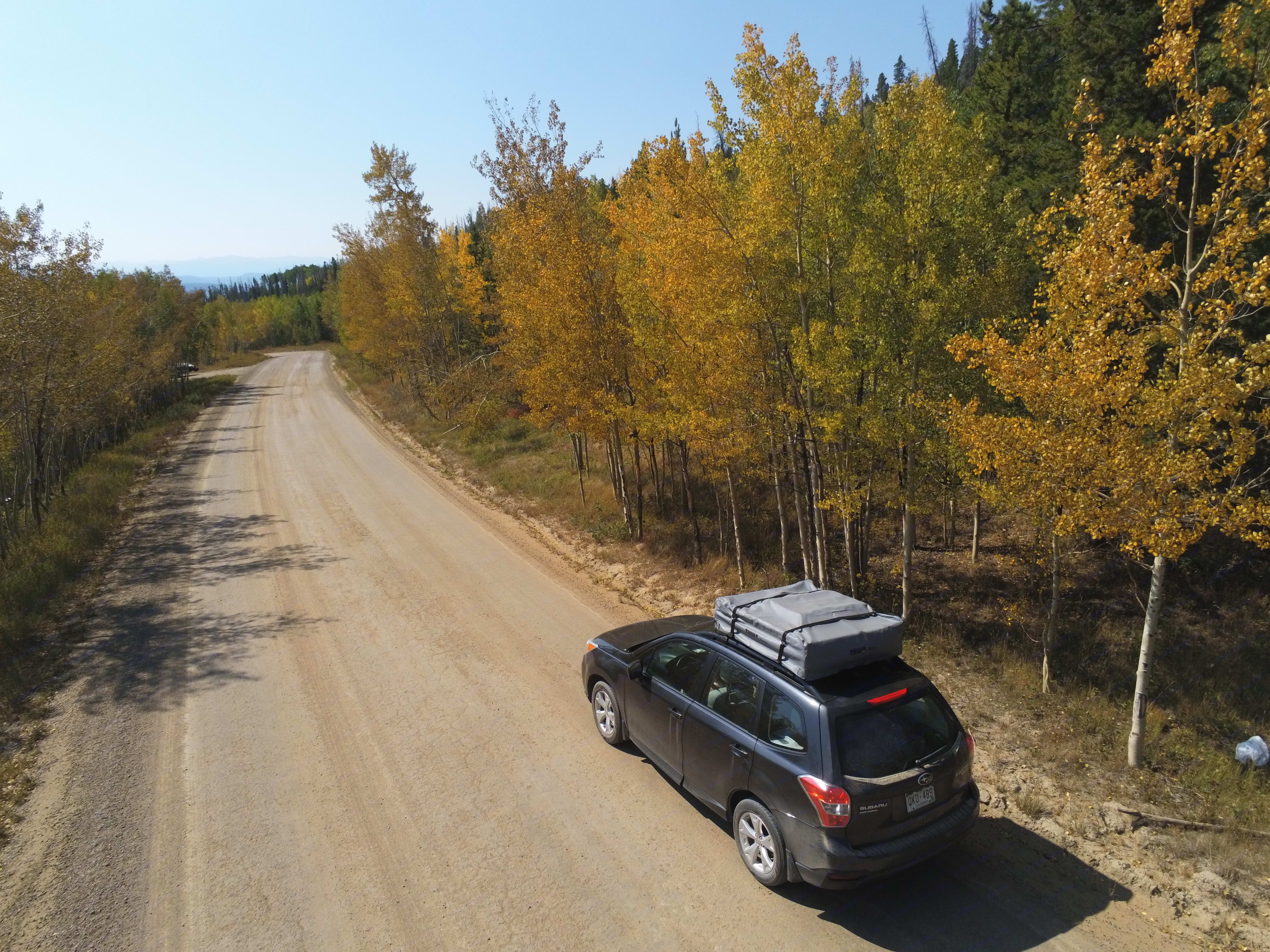 Cruise through the aspens in Sept./Oct.. Subaru Forester 2015