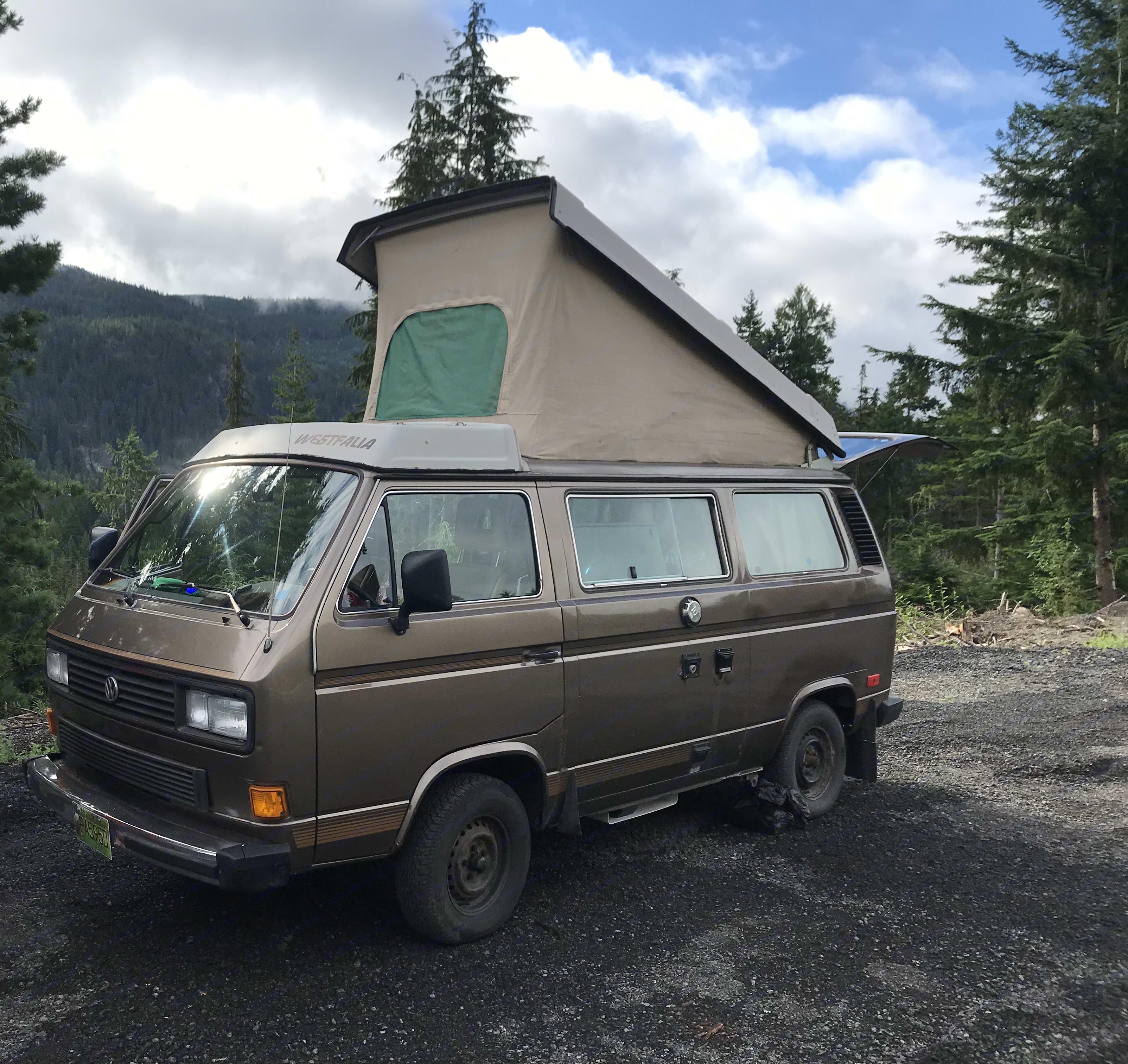 The rustic charm. Volkswagen Westfalia 1986