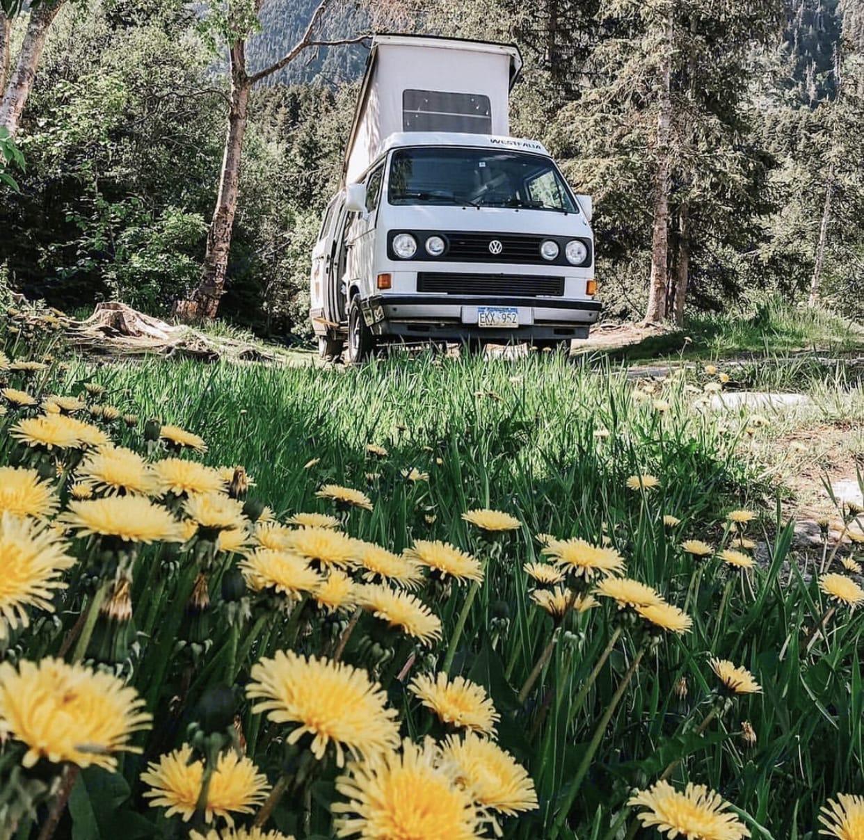 Volkswagen Weekender 1991