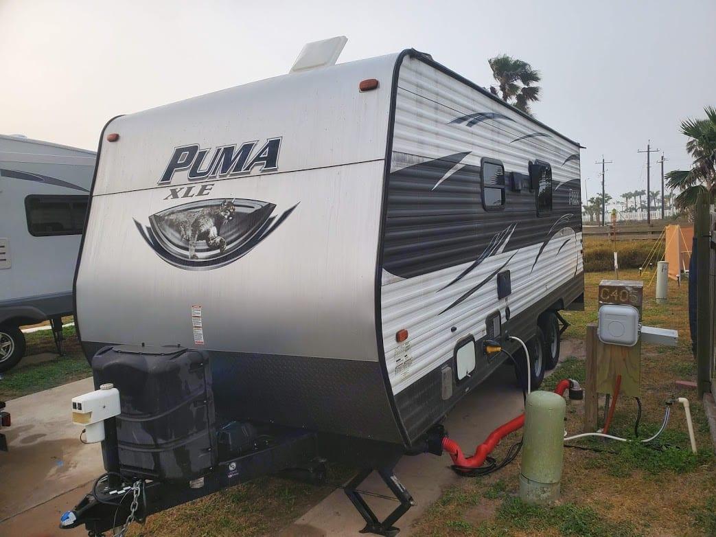 Palomino Puma 2017