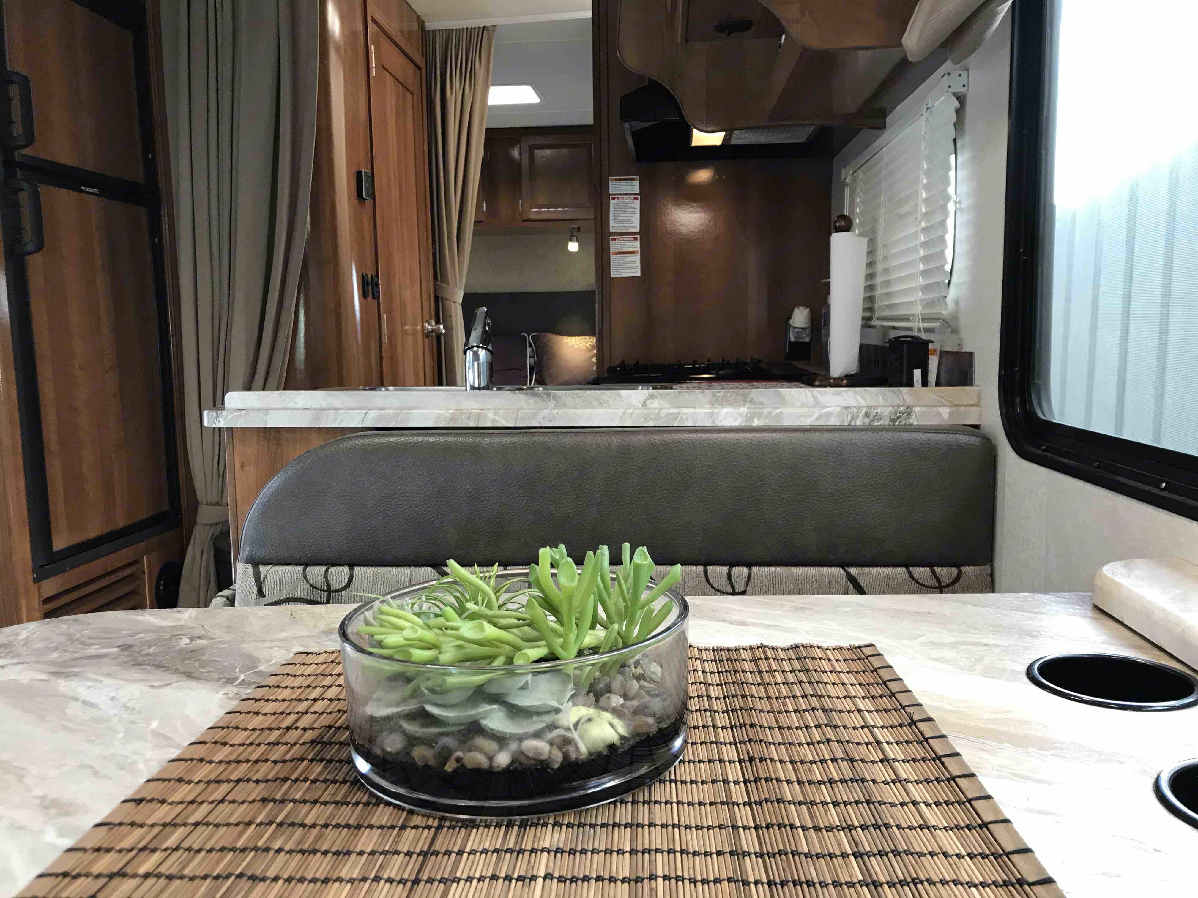 Ready for launch?? . Ford Coachman 2019