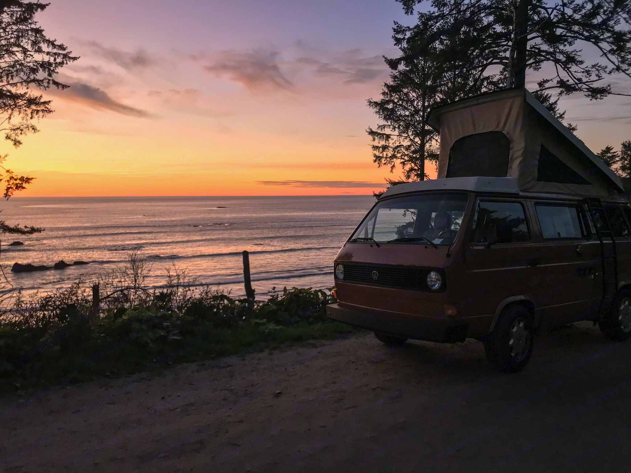 Dundee is a sunset chaser. He will take you to the most beautiful views.. Volkswagen Westfalia 1982