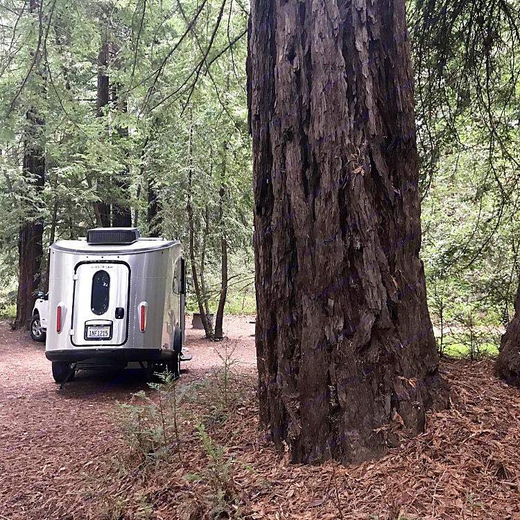 Pfeiffer State Park Big Sur, CA