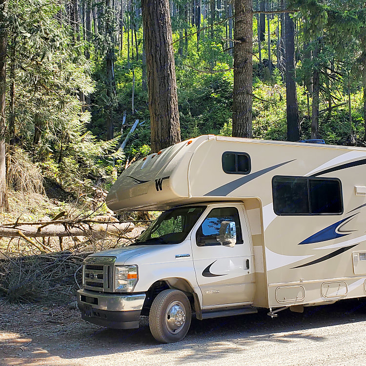 What photo will induct you during your journey with the Haul of Fame?  This is in the Olympic National Forest in Washington state.