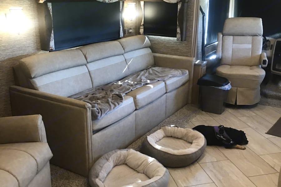 Living Room, queen sleeper bed