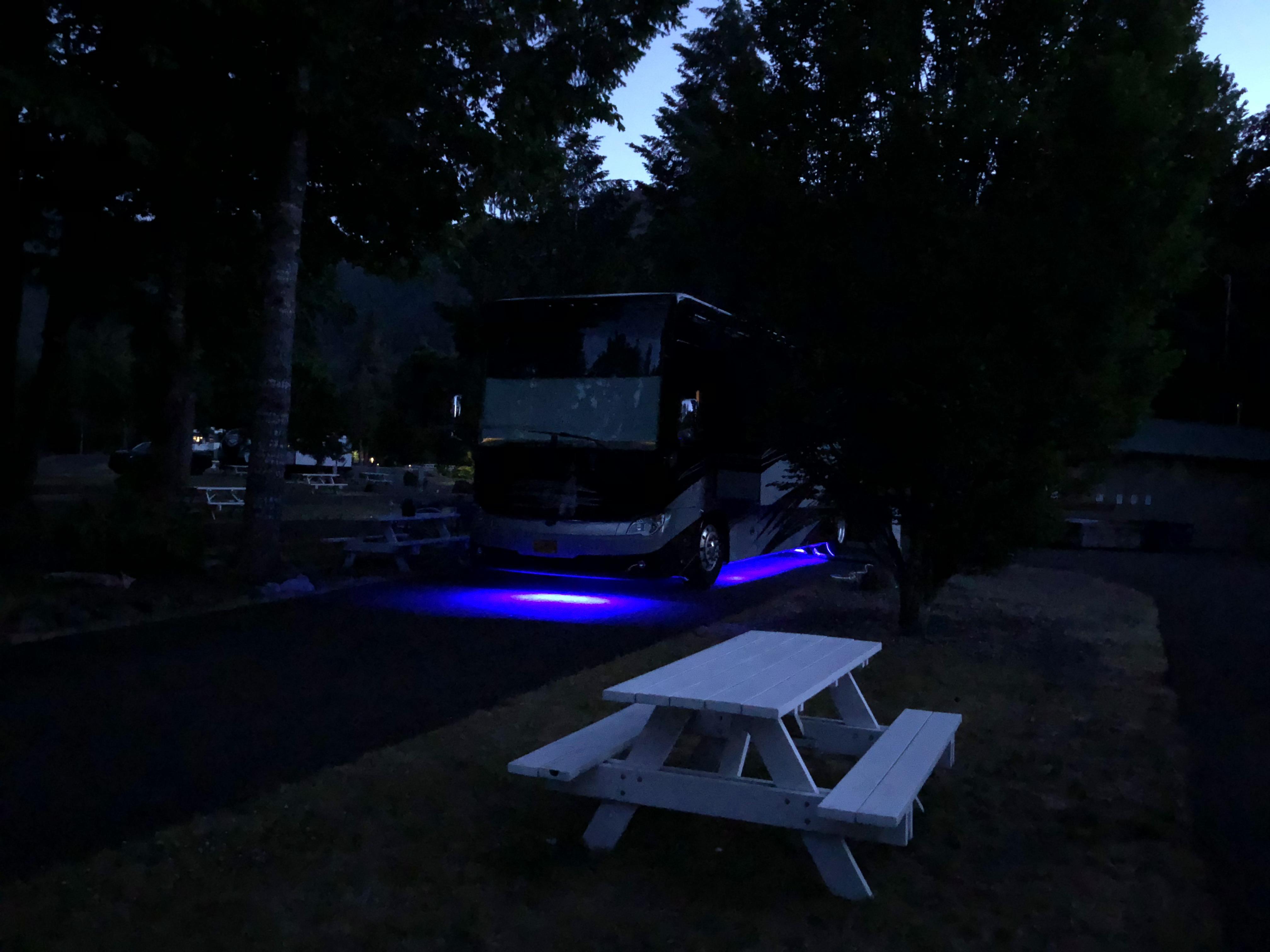 Cool night lights