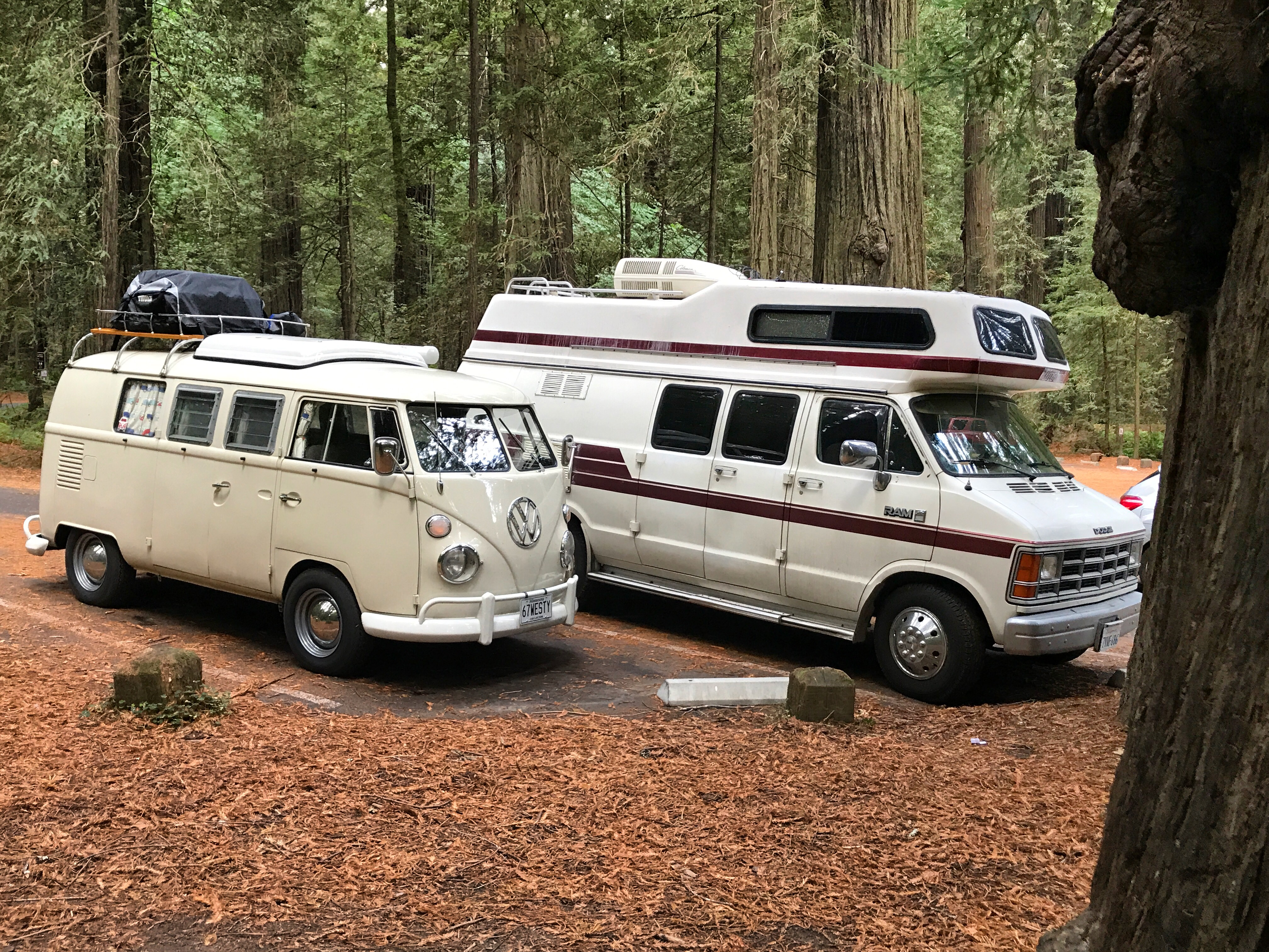 I used to have a VW Westy just like this one and loved her, but Bianca is way more powerful, comfortable, spacious and reliable than a VW van and even has cold AC. There is a toilet and you can stand up inside with two full size beds, as well. Dodge B350 Intervec Horizon 190 1987