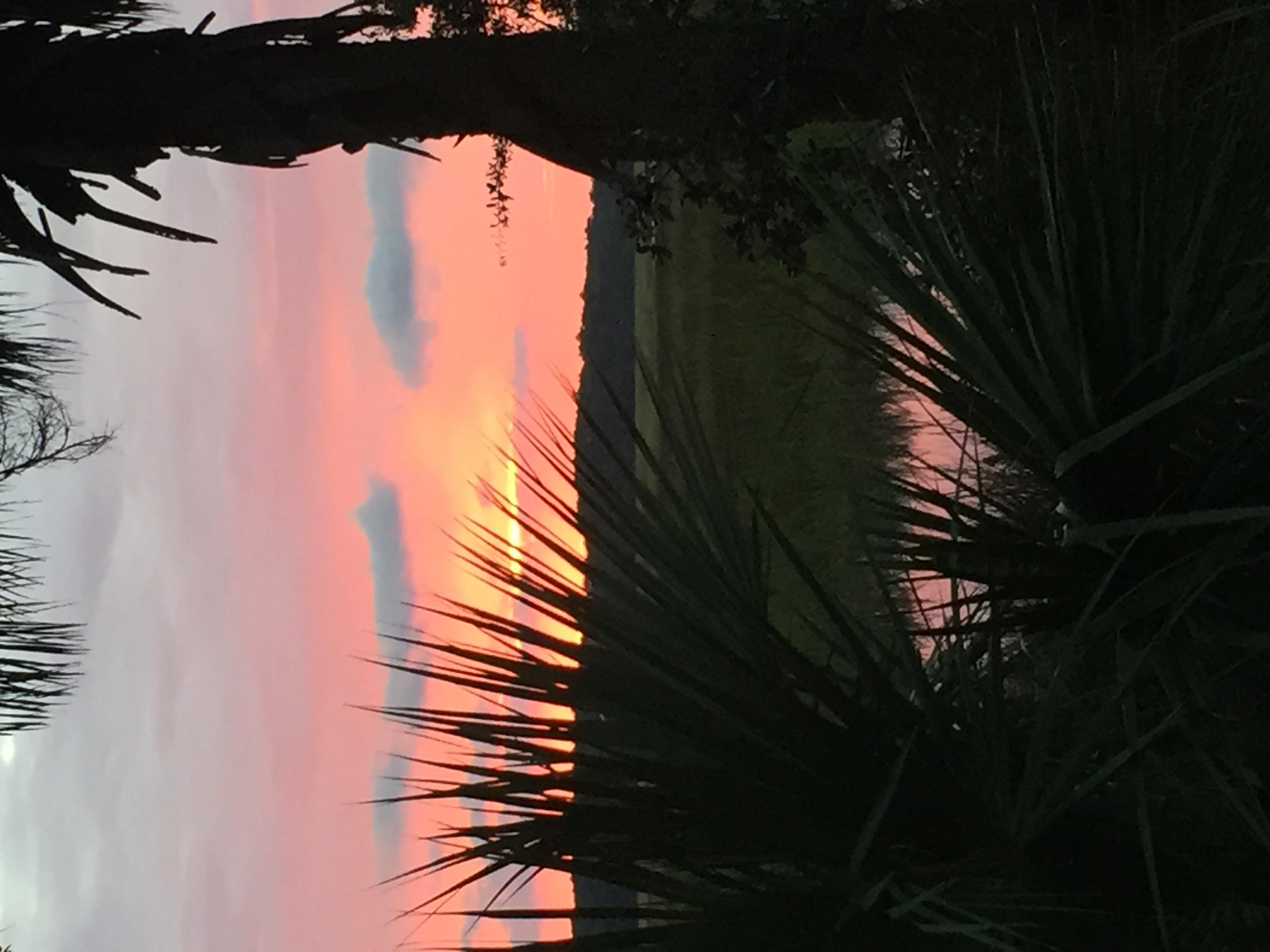 Savannah Sunset from campground.   RV life !