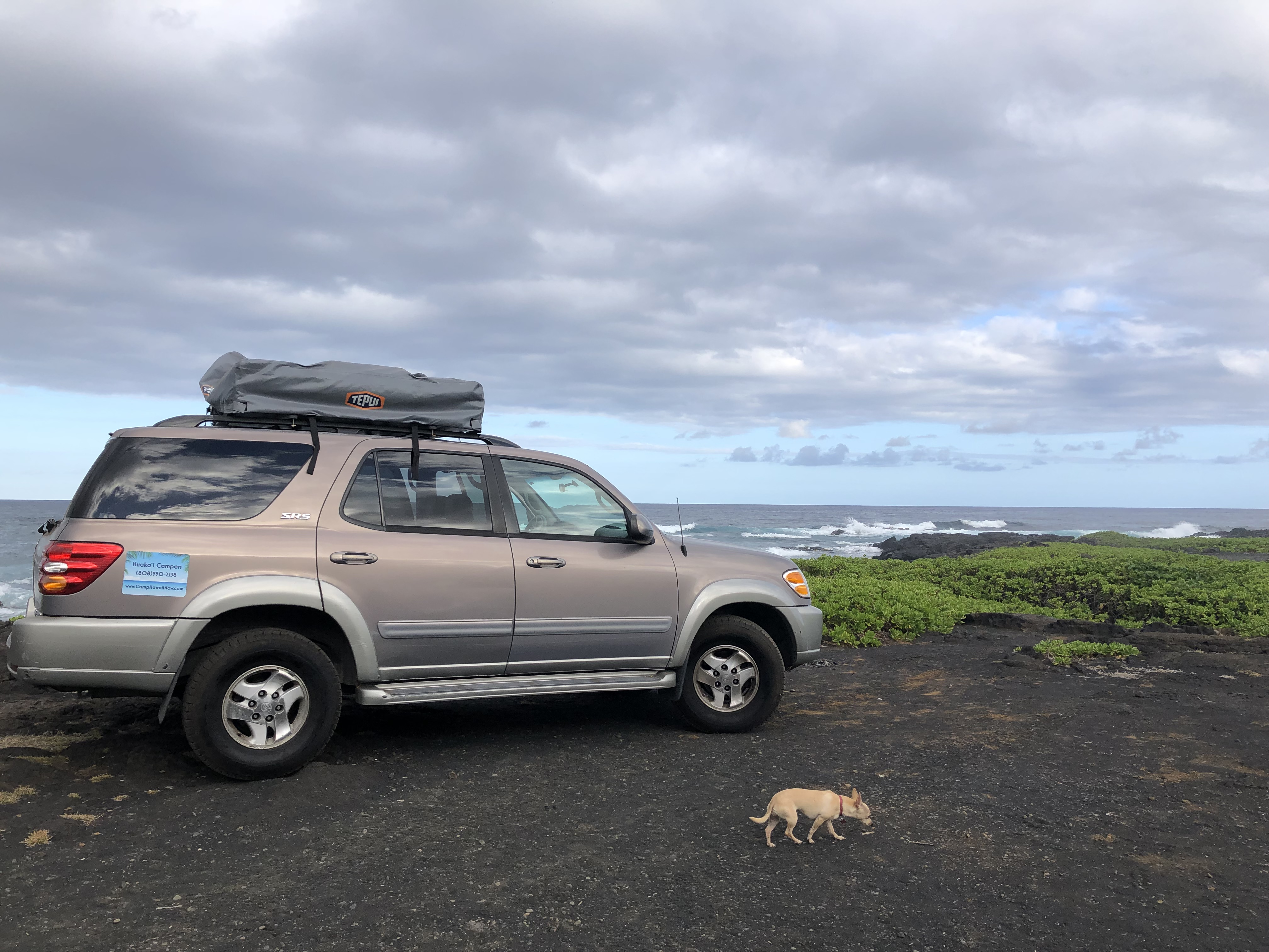 Breathtaking! The trip of a lifetime!. Toyota Sequoia 2002