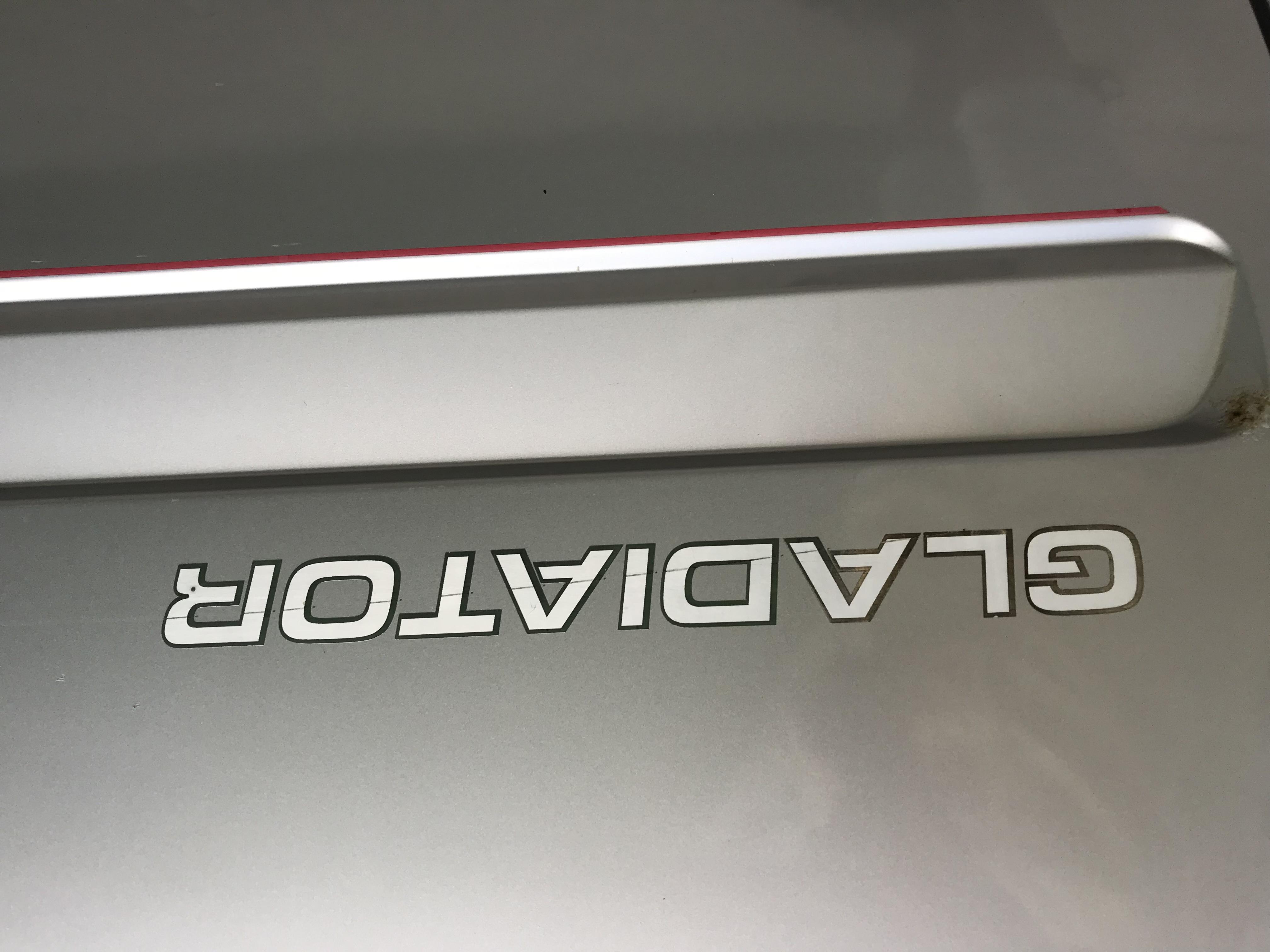 Mercedes Conversion Van 2006