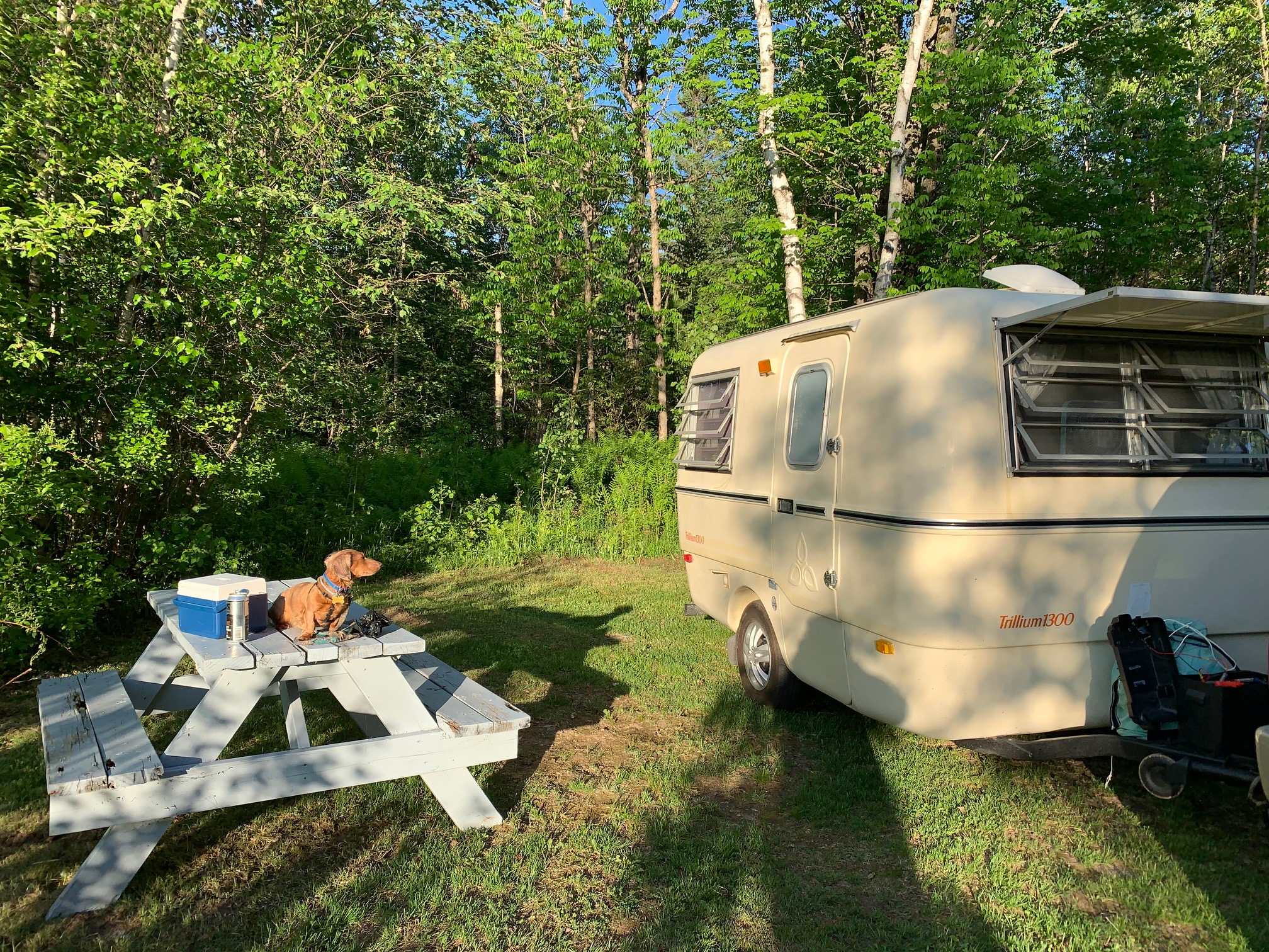 Marv enjoying the campsite in Summer. Vintage; Trillium Fiberglass 1300 1980