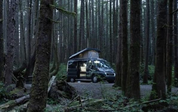 Deep in the woods. Pleasure Way Tofino 2020