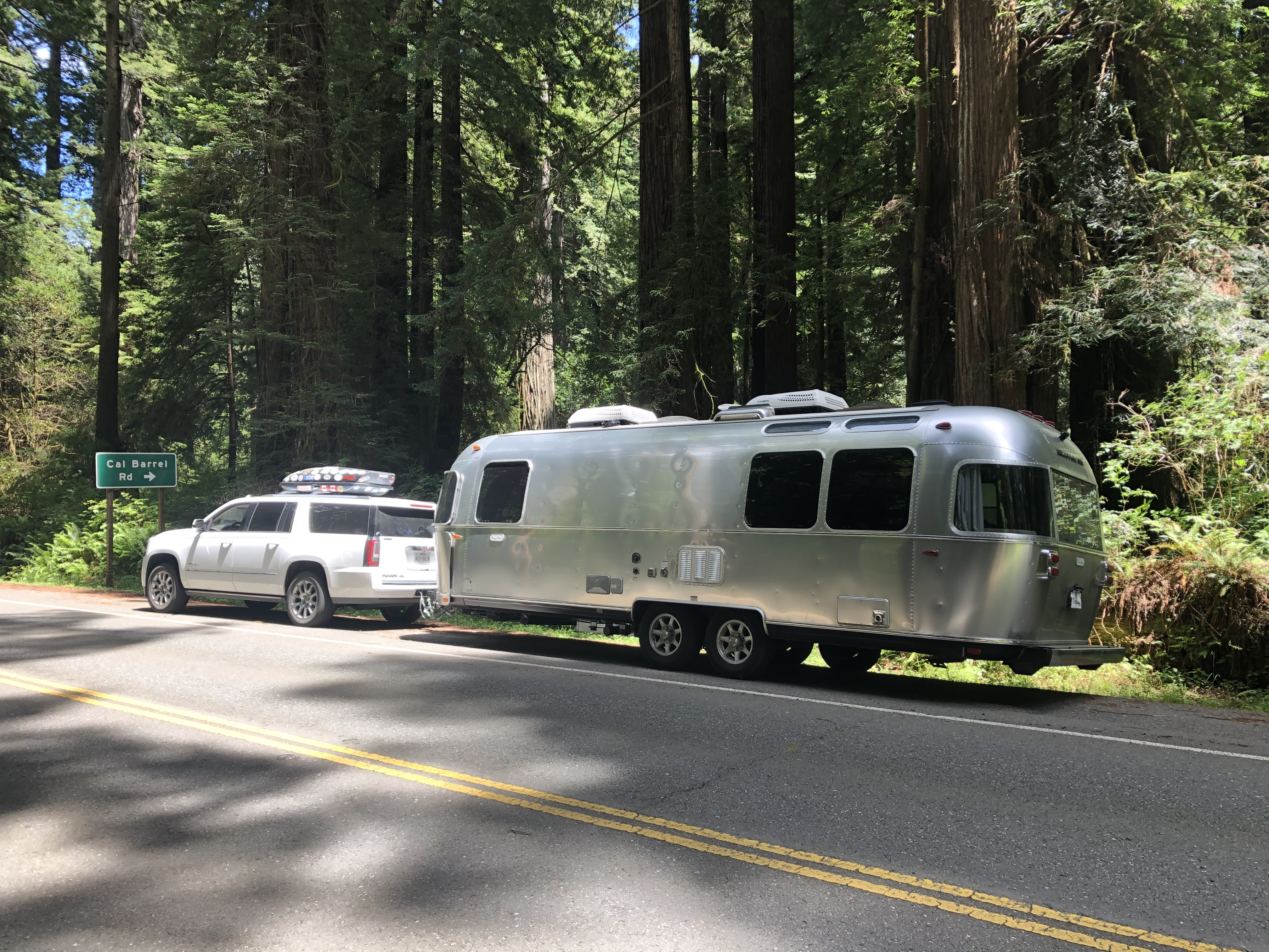 Redwoods National Park, California. Airstream Flying Cloud 2020