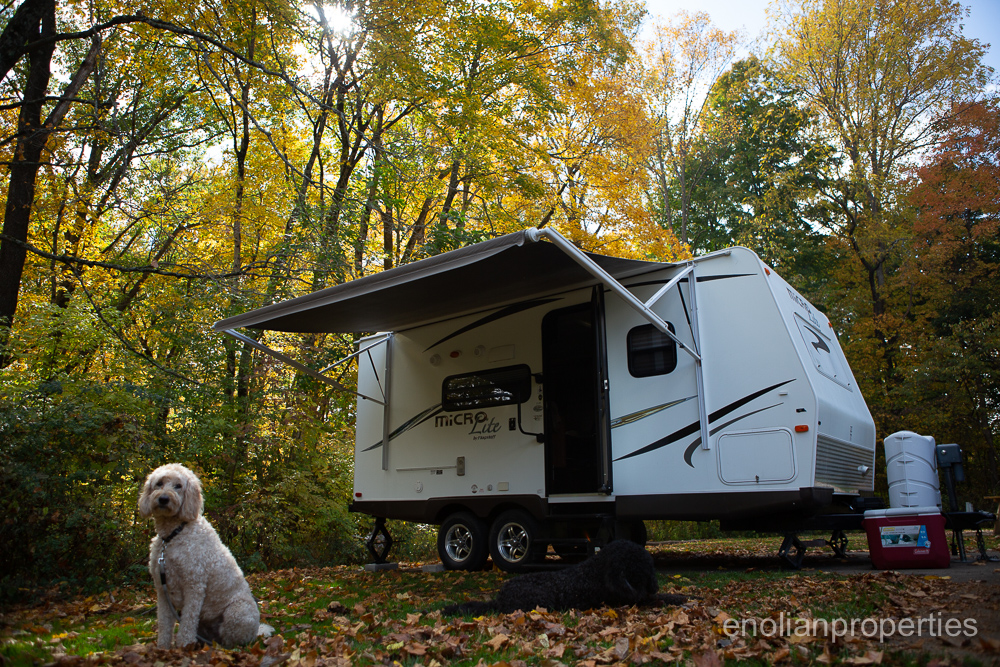 Pet Friendly, electric awning and jack, and small enough for most state parks.. Flagstaff Micro Lite 2014