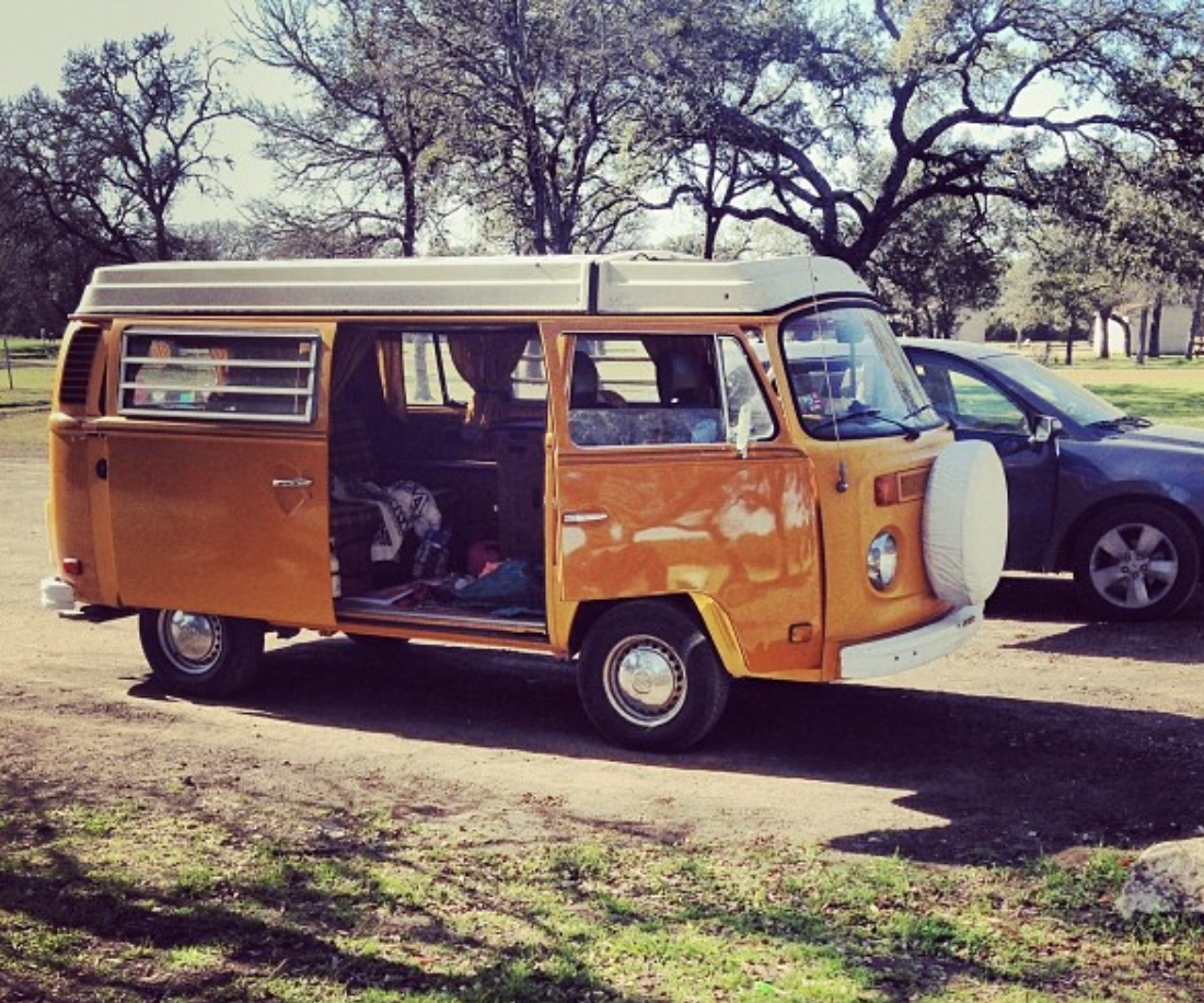 Bisby fits right in at the park!. Volkswagen Westfalia 1976