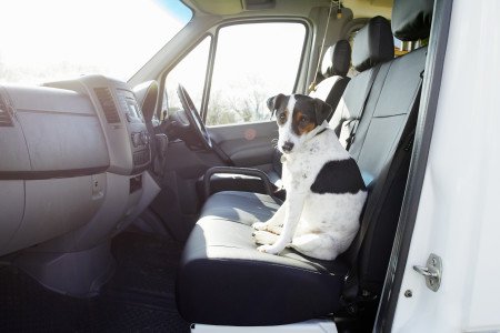 Cabin with seat covers (pet friendly) 1of 2.