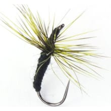 Ishigaki Fly 3 Pack - Size 12