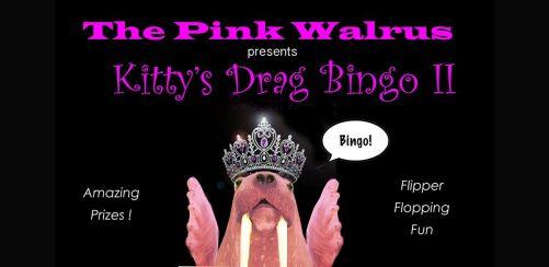 Pink Walrus - Kittys Drag Bingo II