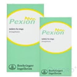 Pexion Tablets 100mg for dogs 100 pack