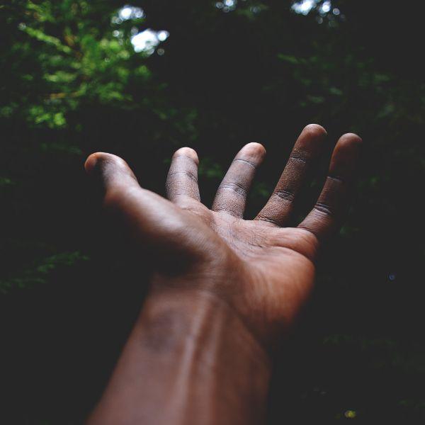 Five Fingers, Open Hand