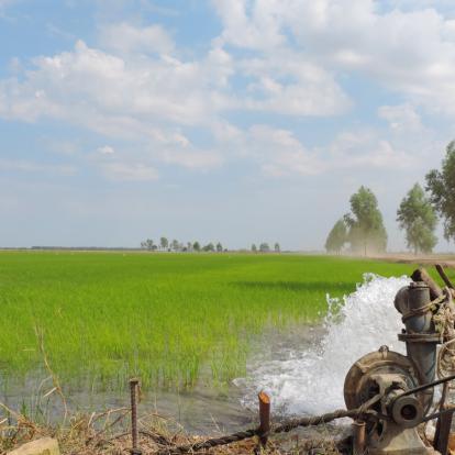 Samen werken aan gebiedsgerichte aanpak voor betere waterkwaliteit